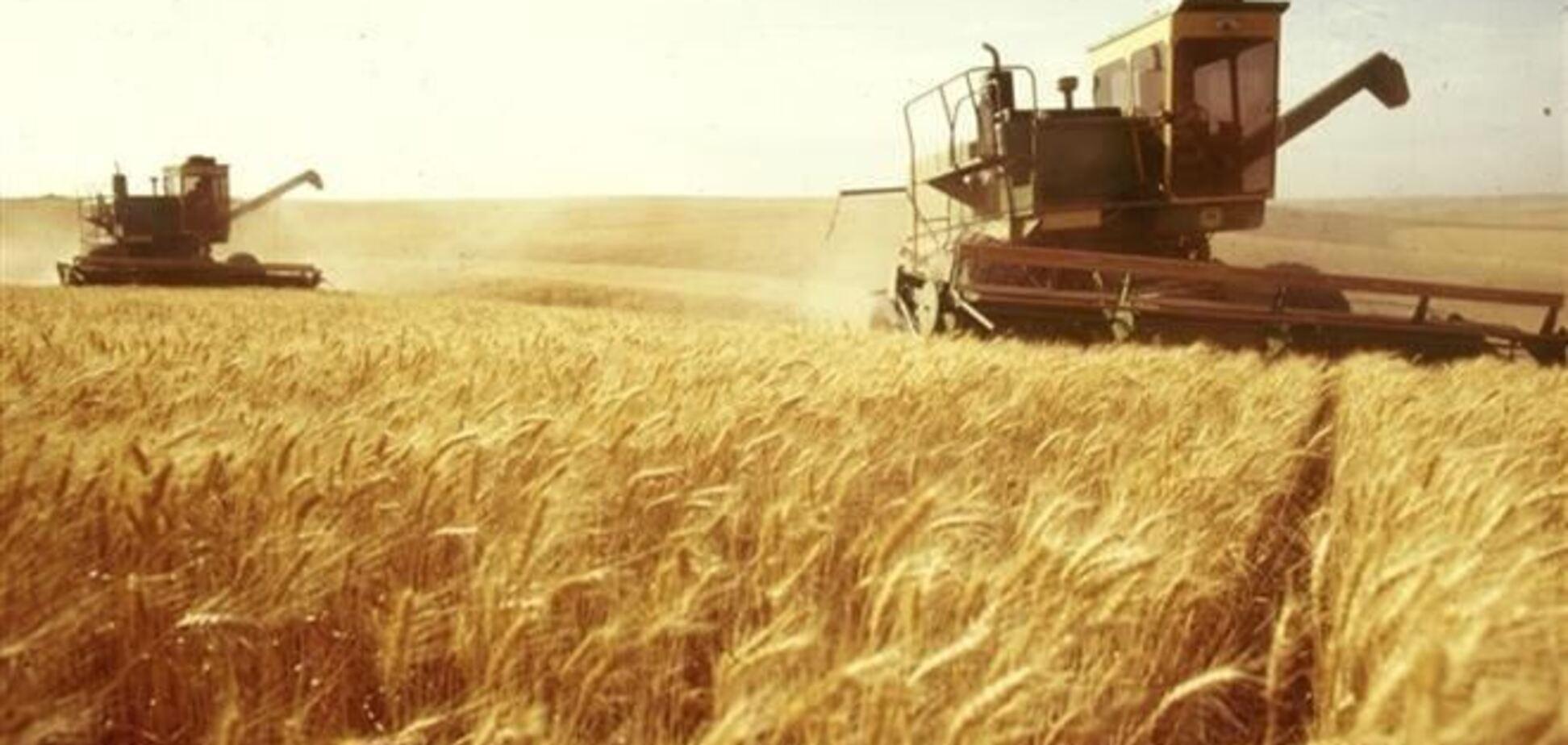 МинАПП: в Украине могут возникнуть проблемы с координацией экспорта продовольствия