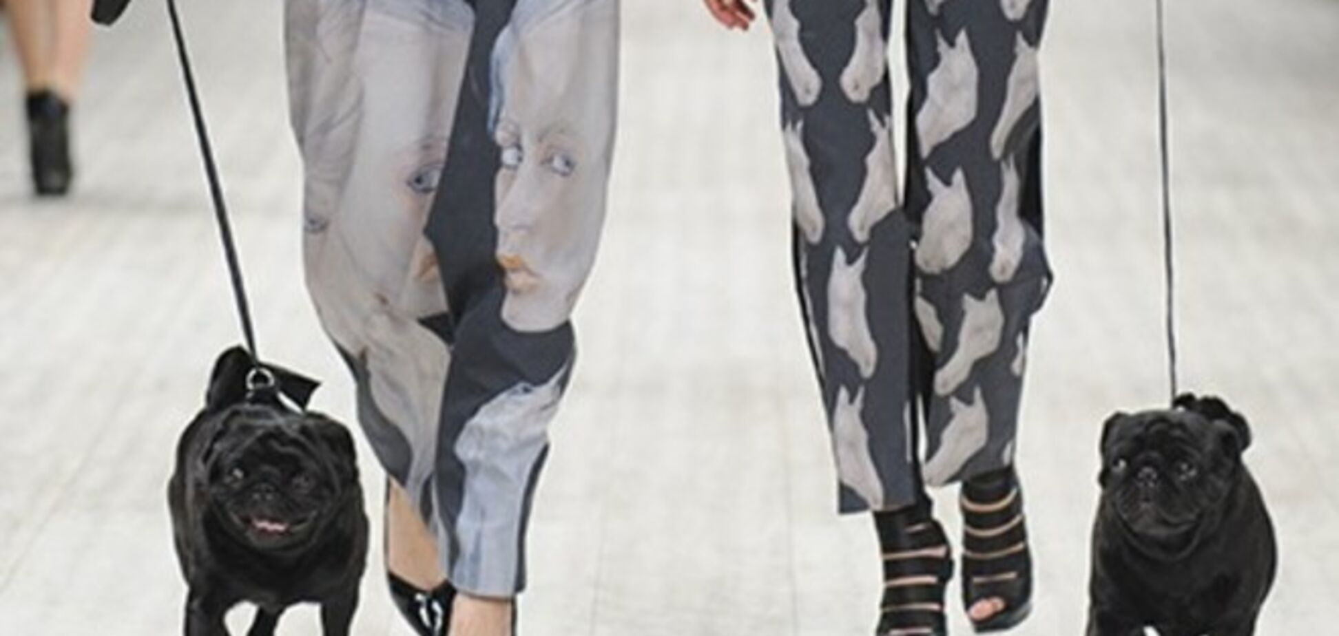 Смешались в кучу кони, люди и собаки - Fresh Fashion в последний день Ukrainian Fashion Week
