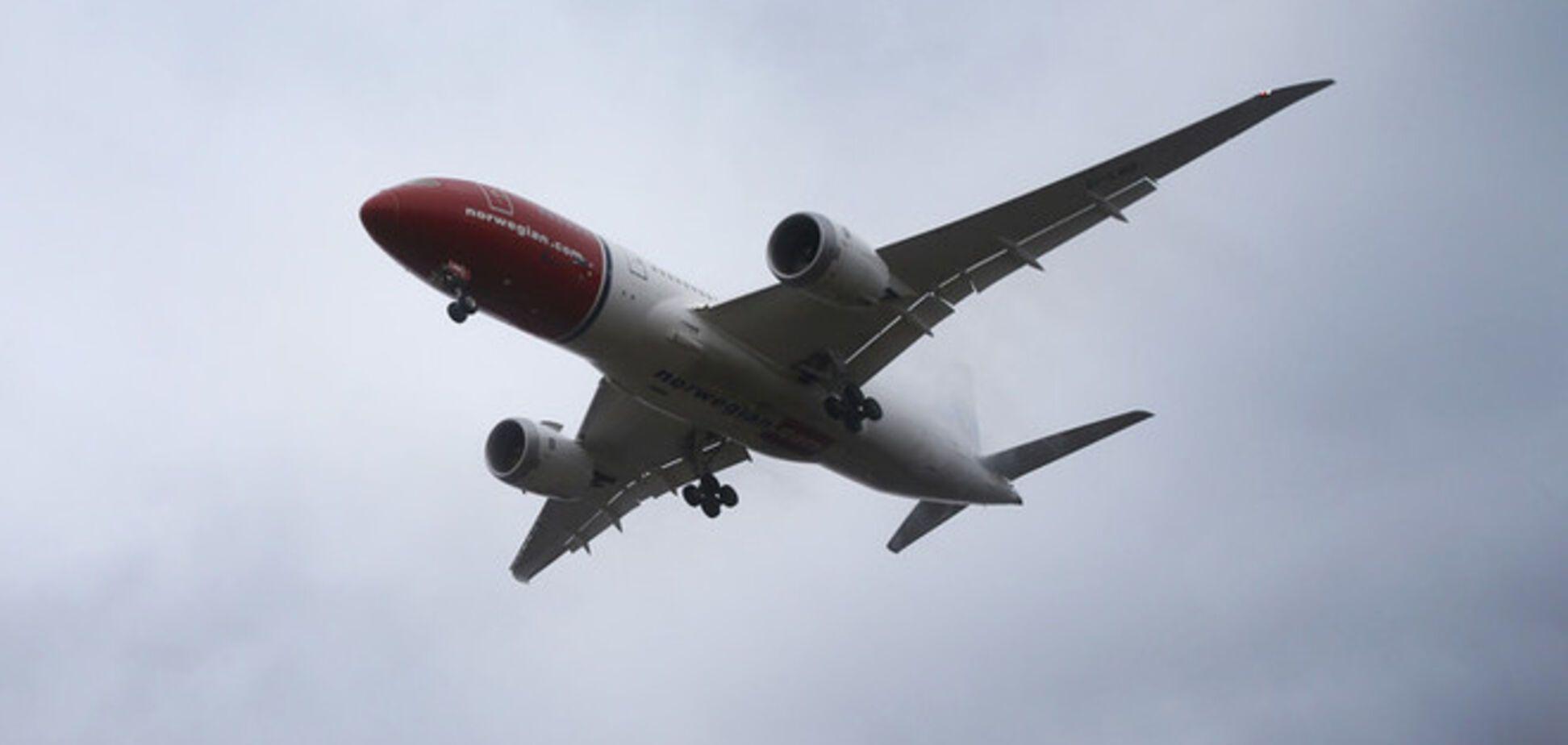 'Героическая' мышь пять часов держала самолет на взлетке