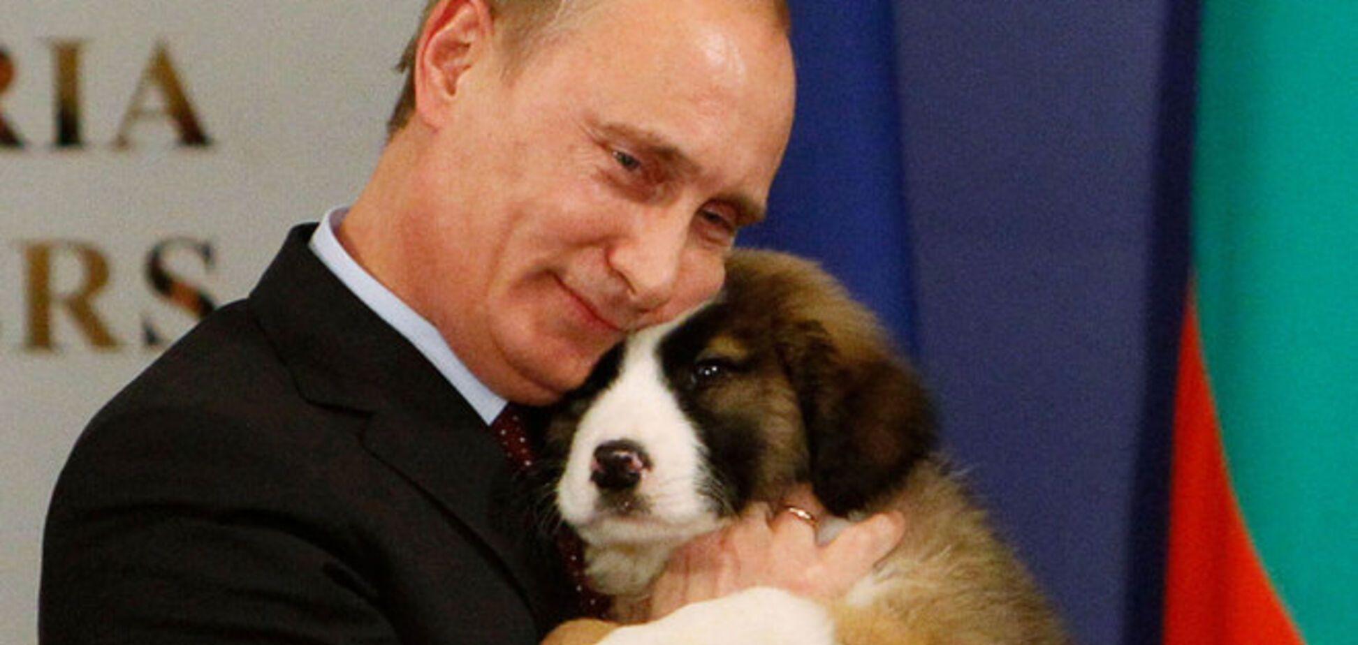 Путин отметит день рождения среди росомах, бобров и оленей