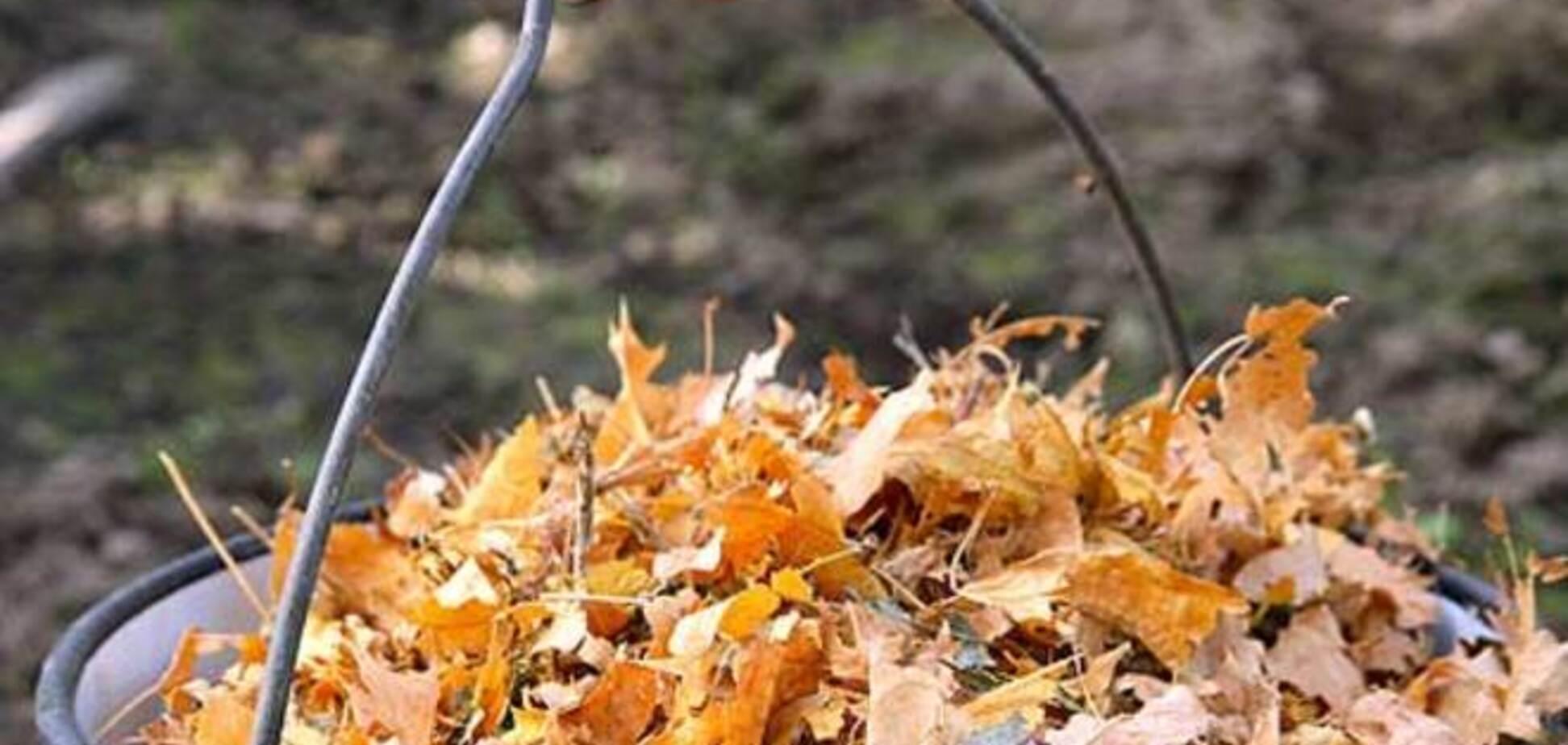 В Москве решили штрафовать дворников на 300 тыс. рублей за 'воровство' опавшей листвы