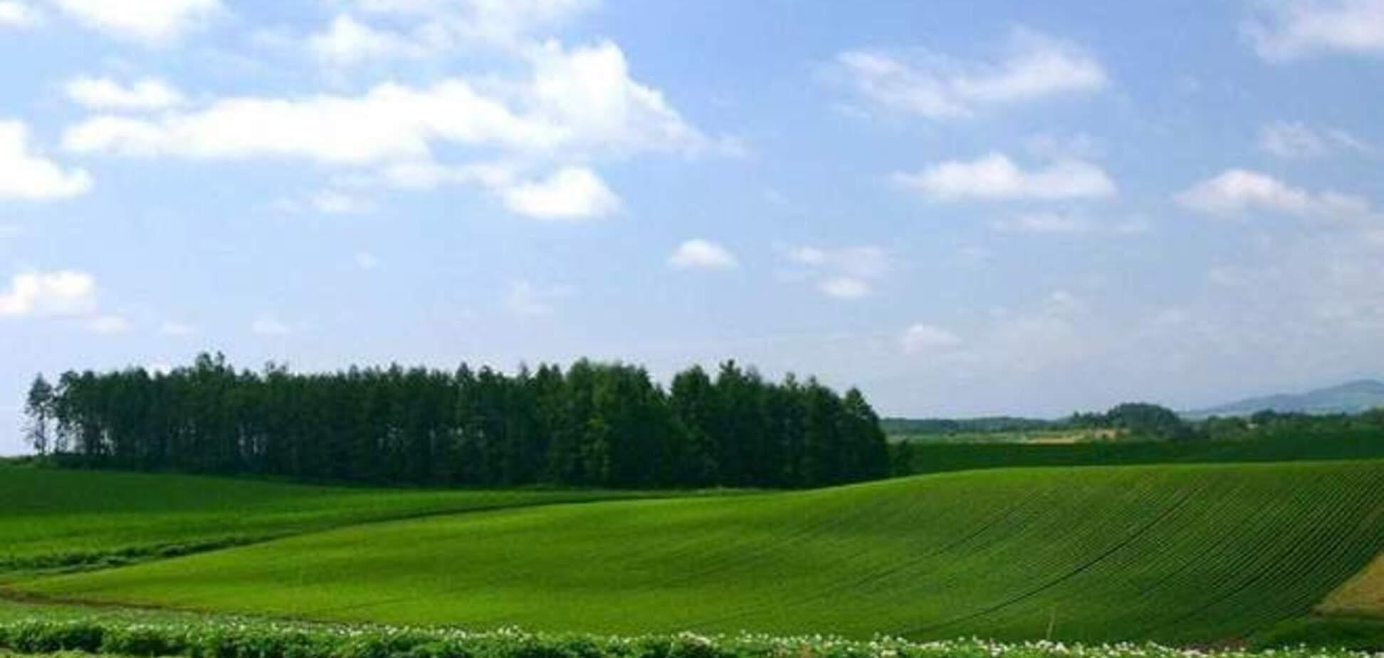 Земля под Киевом подешевела в среднем до 10%