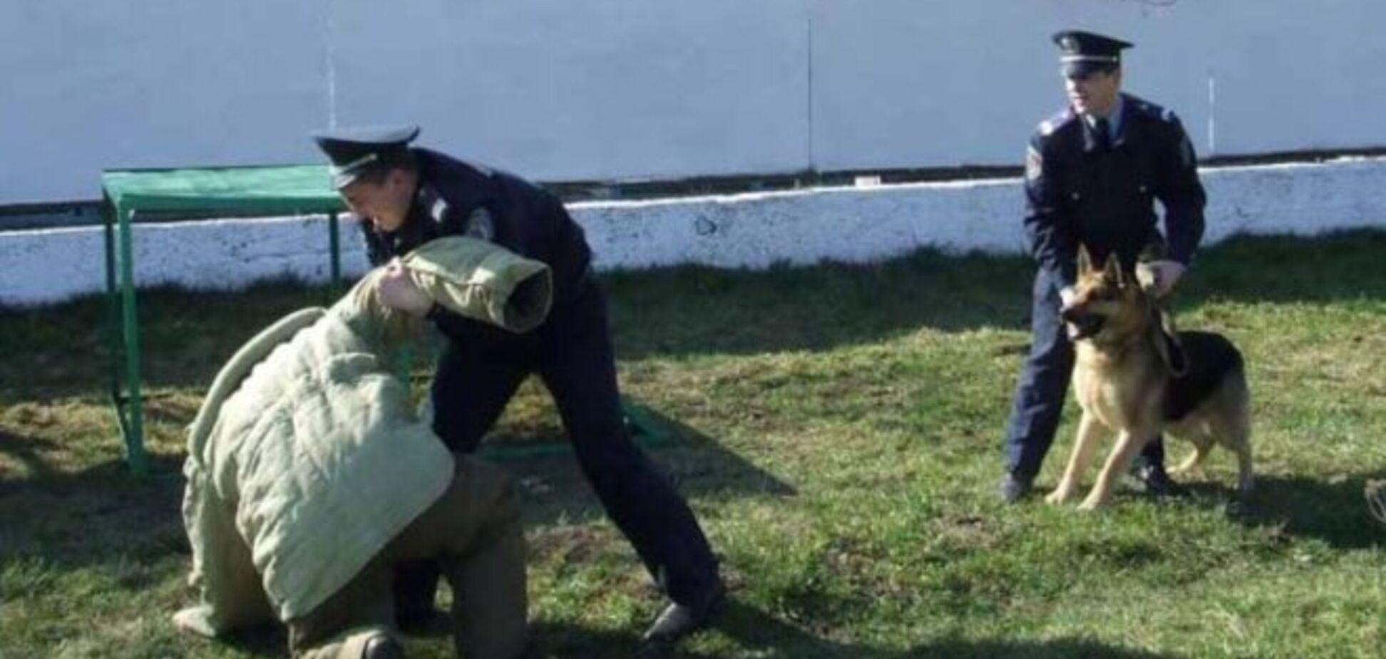 Полтавчане после ограбления ЧП пытались скрыться на территории милицейского объекта