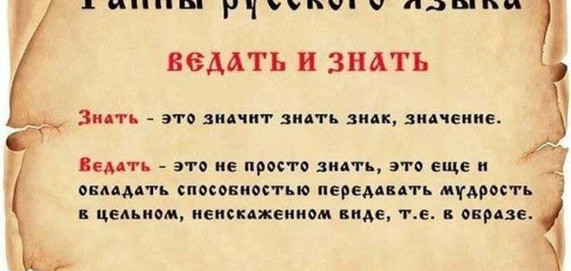 Регионалы предлагают срочно сделать русский язык официальным в Украине