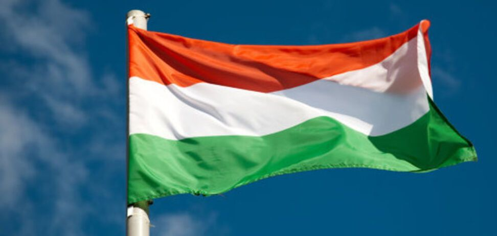 МИД: Венгрия не требует территориальной автономии для своего меньшинства в Украине