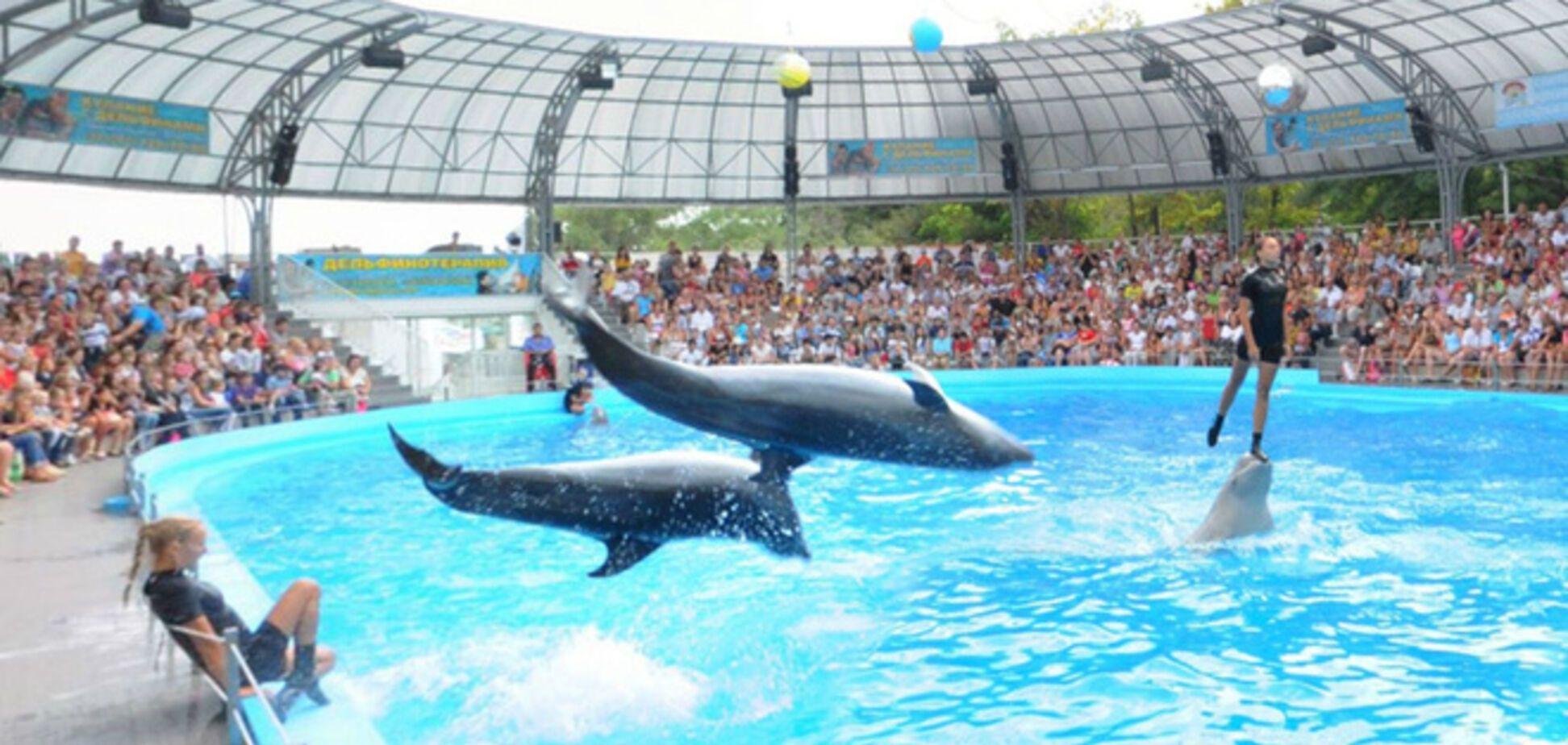 В Украине открылся единственный в Европе отель с дельфинами