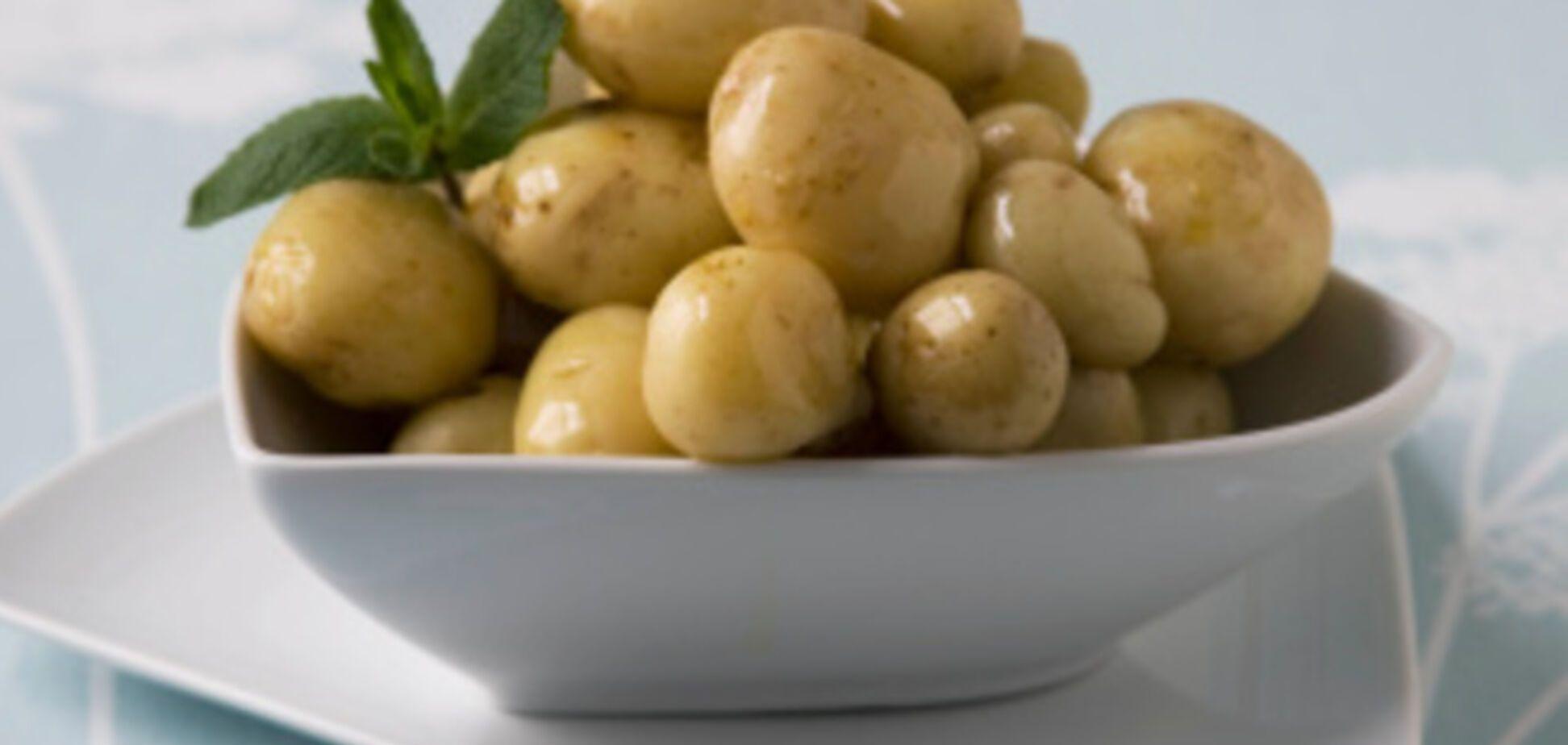 От картошки можно умереть. Ужасные случаи массовых отравлений овощем