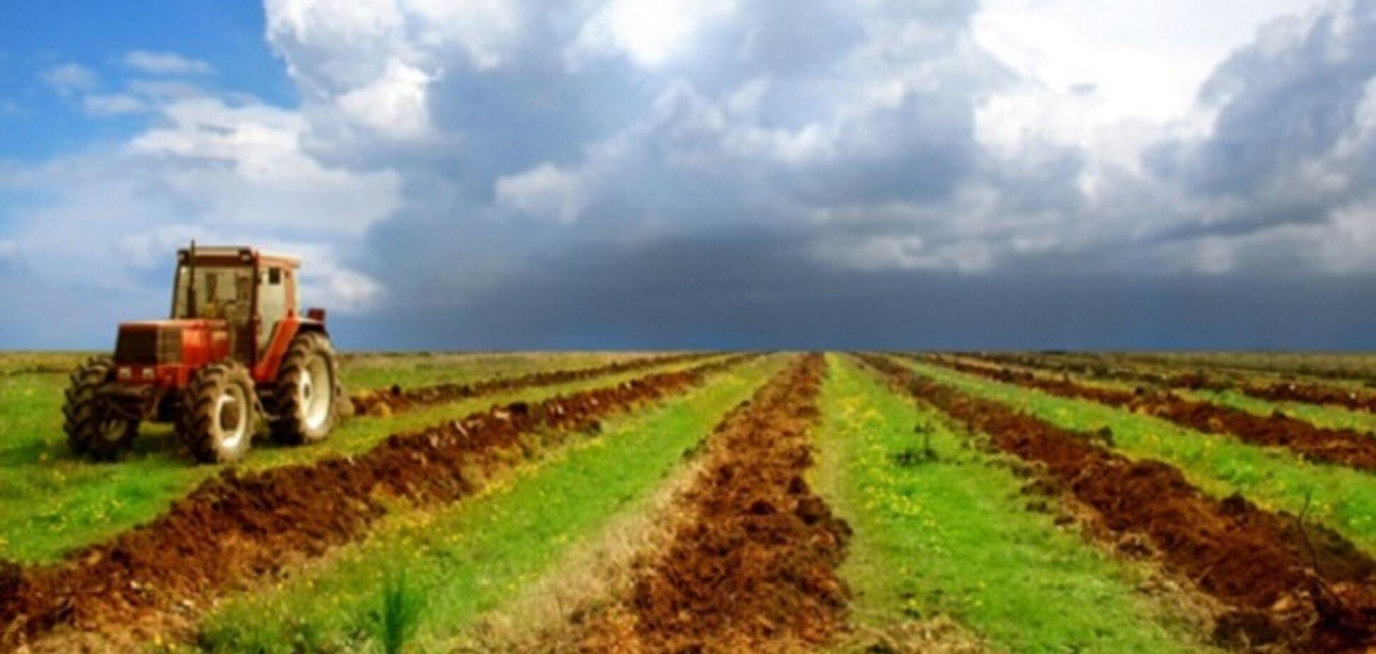 Установят новый минимальный строк для аренды с/х земель