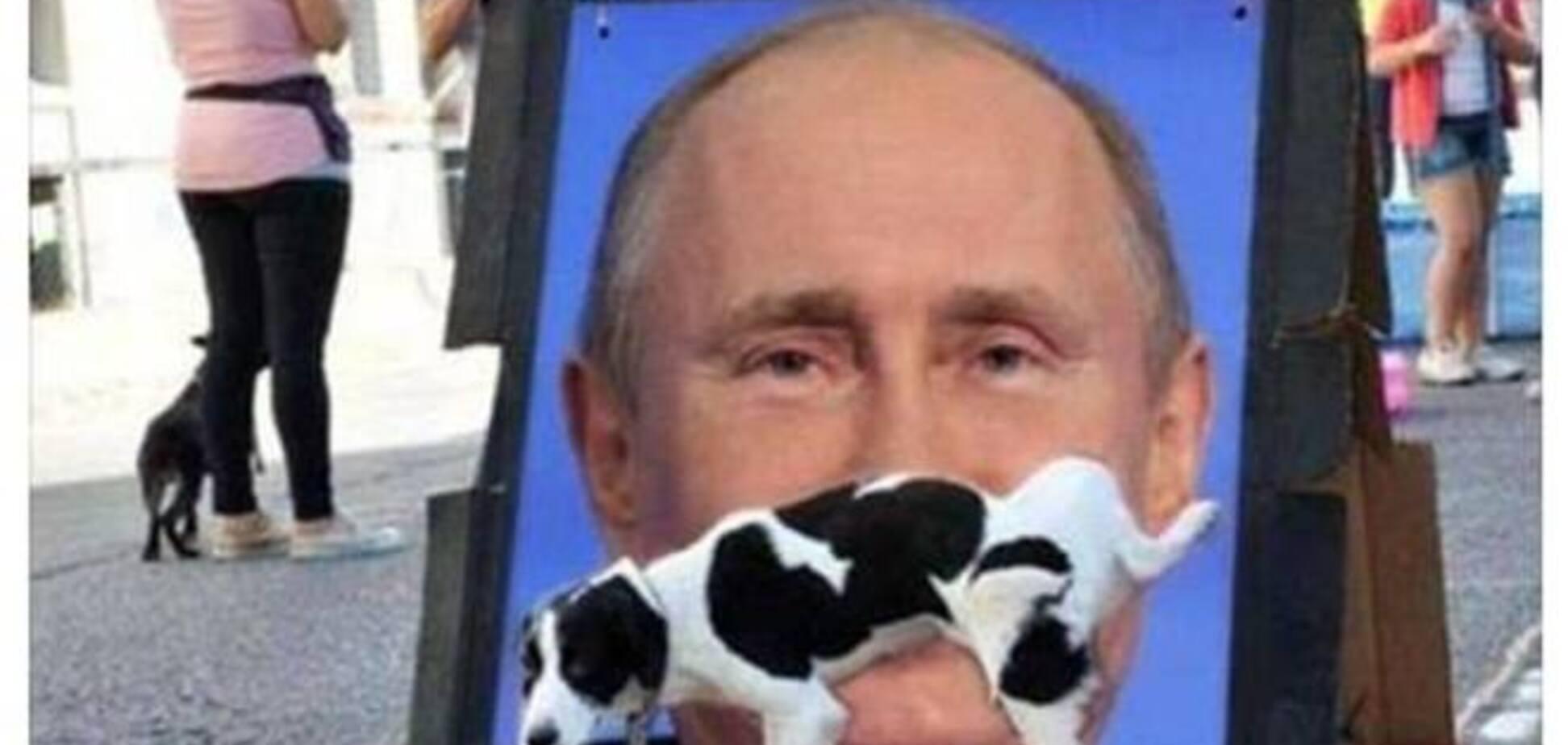 Собака по-своєму відреагував на санкції проти Путіна і порвав Інтернет