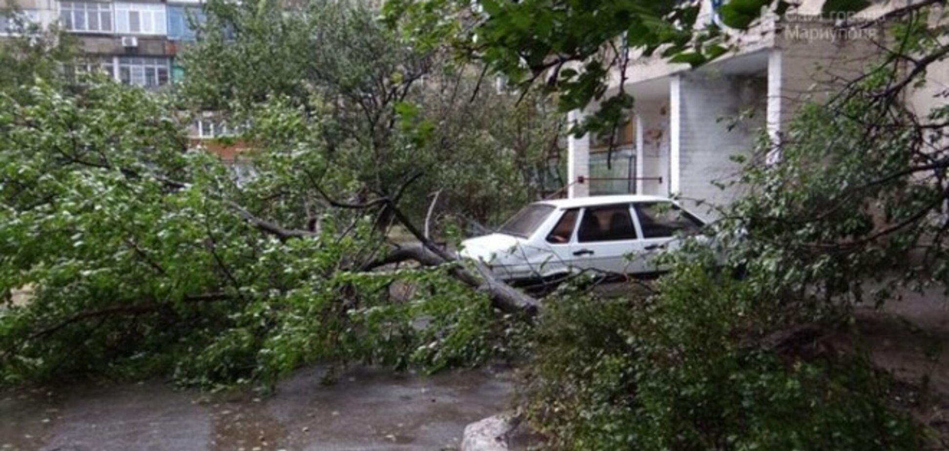 Опубликованы фото  и видео изувеченных после урагана Днепропетровска и Мариуполя
