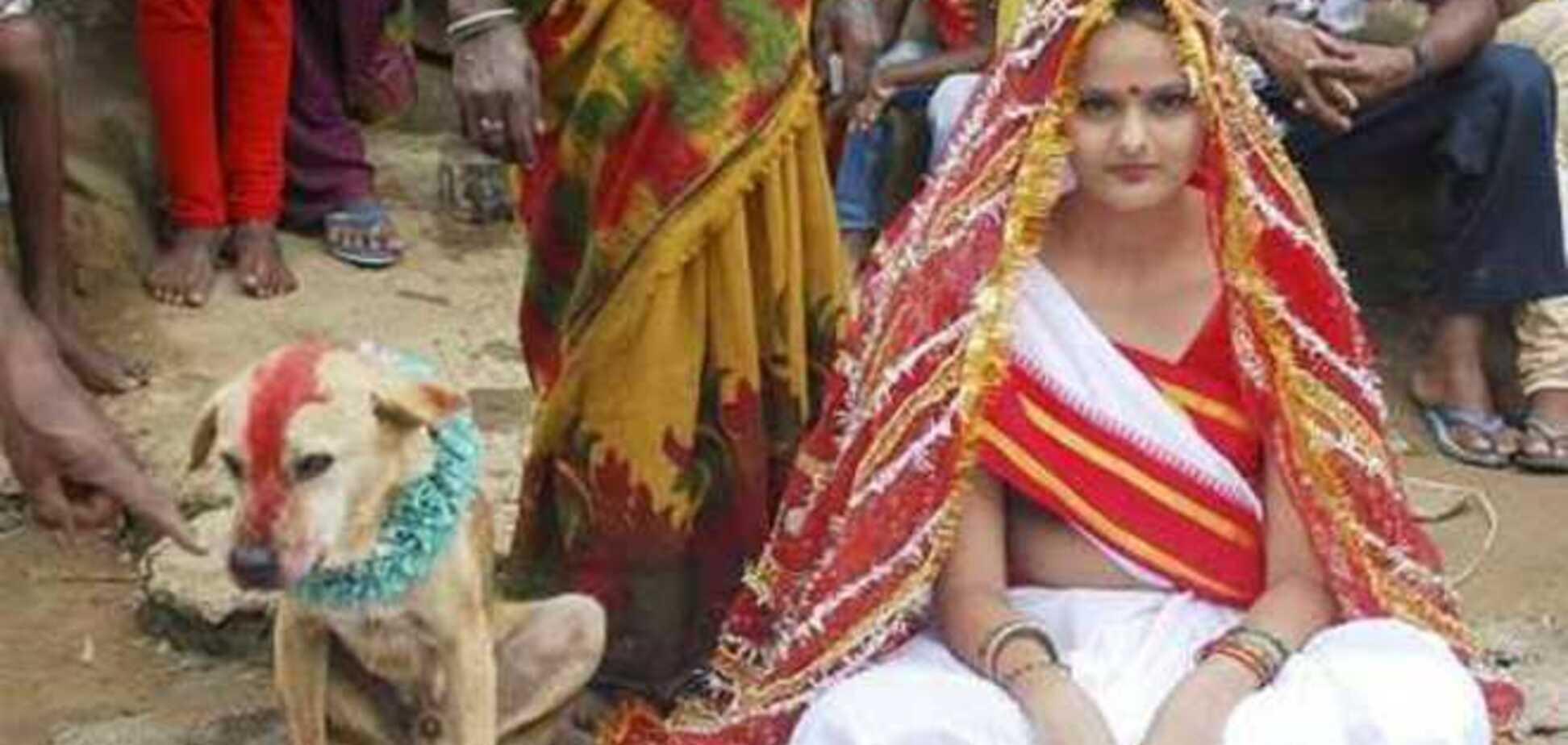 В Индии де вушку заставили выйти замуж за собаку