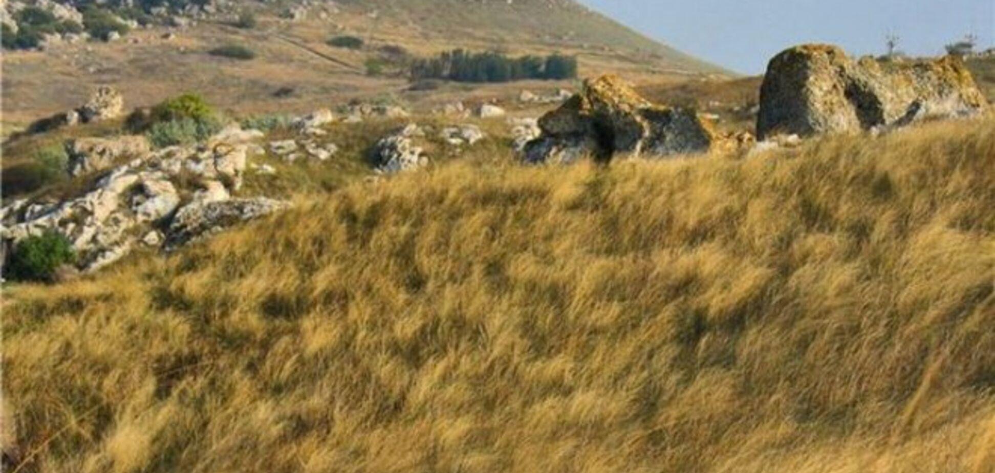 Письмо крымчанки о принесенных злым ветром