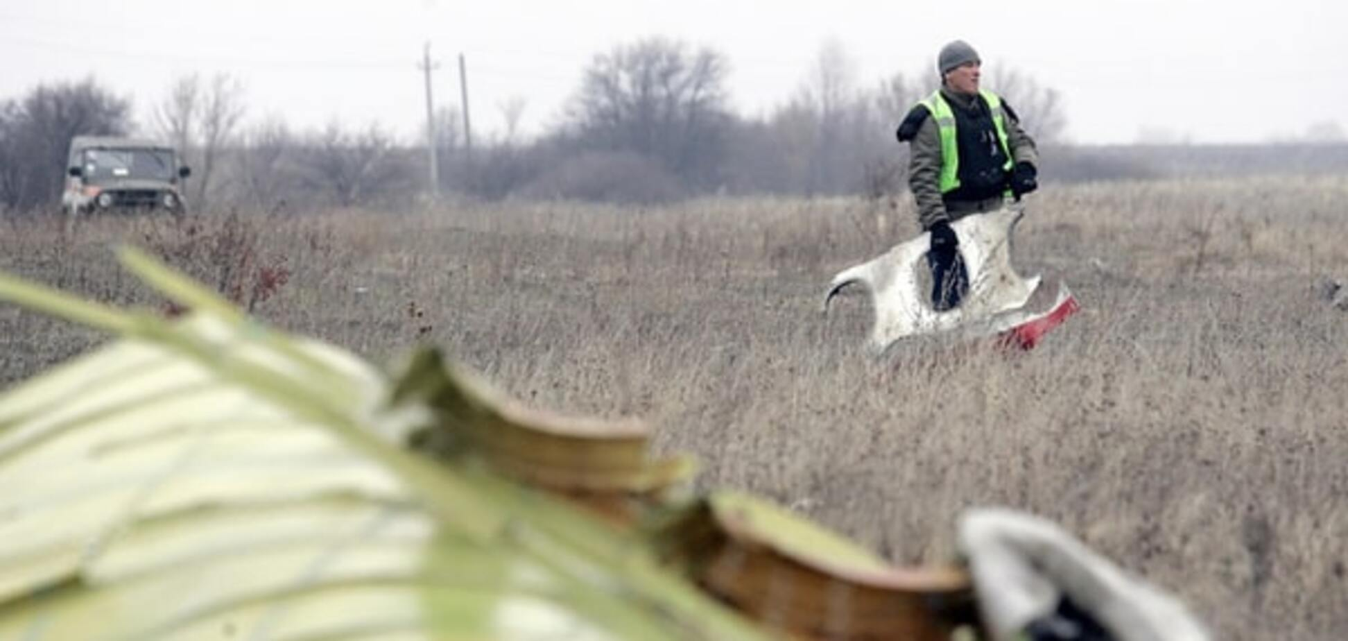 Сам по собі 'Бук': Нідерланди не назвуть винного в катастрофі MH17
