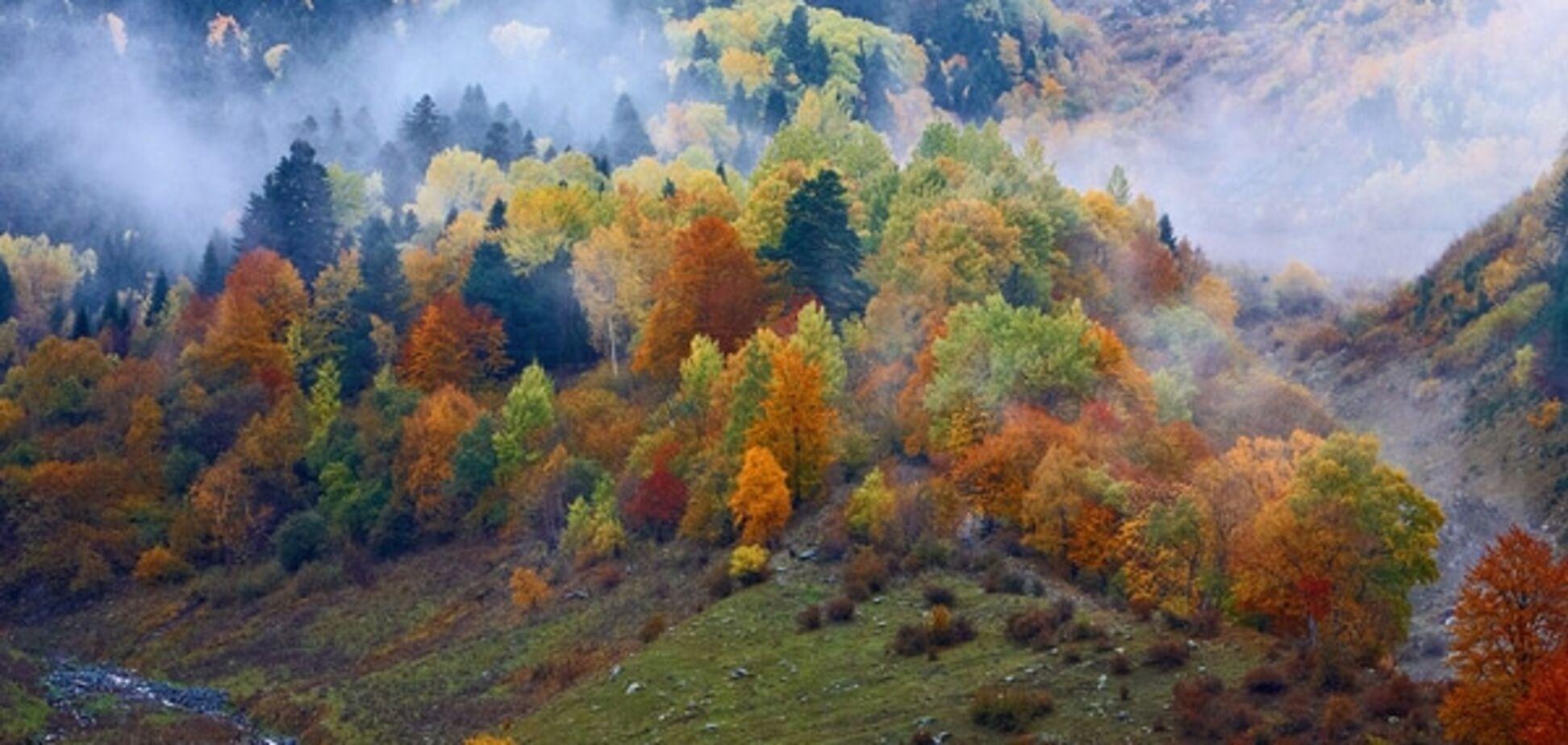 10 идей осеннего отдыха в Украине: Хэллоуин с привидениями и рыбалка в Карпатах