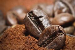 У Британії запропонували заправляти авто біопаливом із кавової гущі