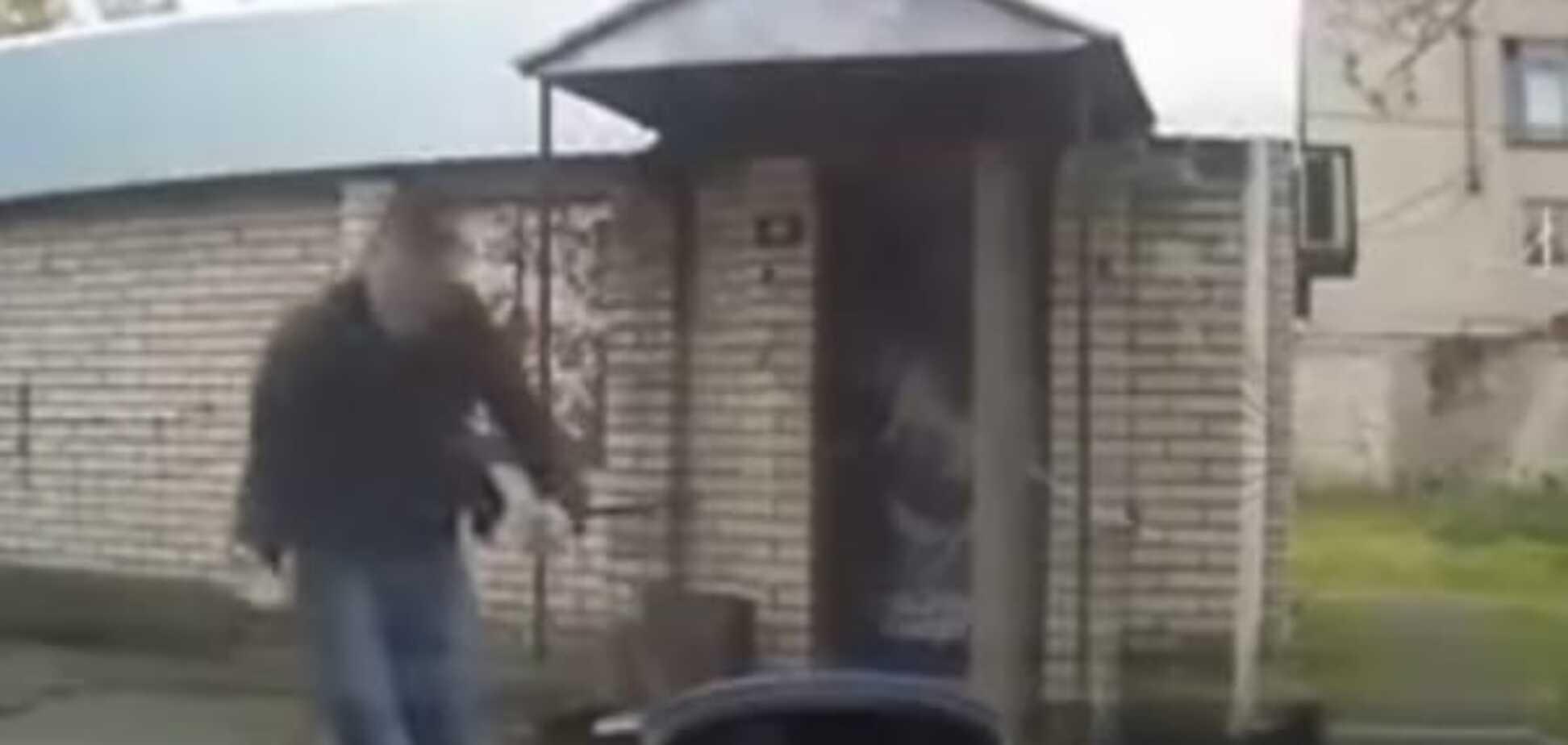 І навіть не помітили! Мережу підкорює ролик, на якому людину збила зграя собак: відеофакт