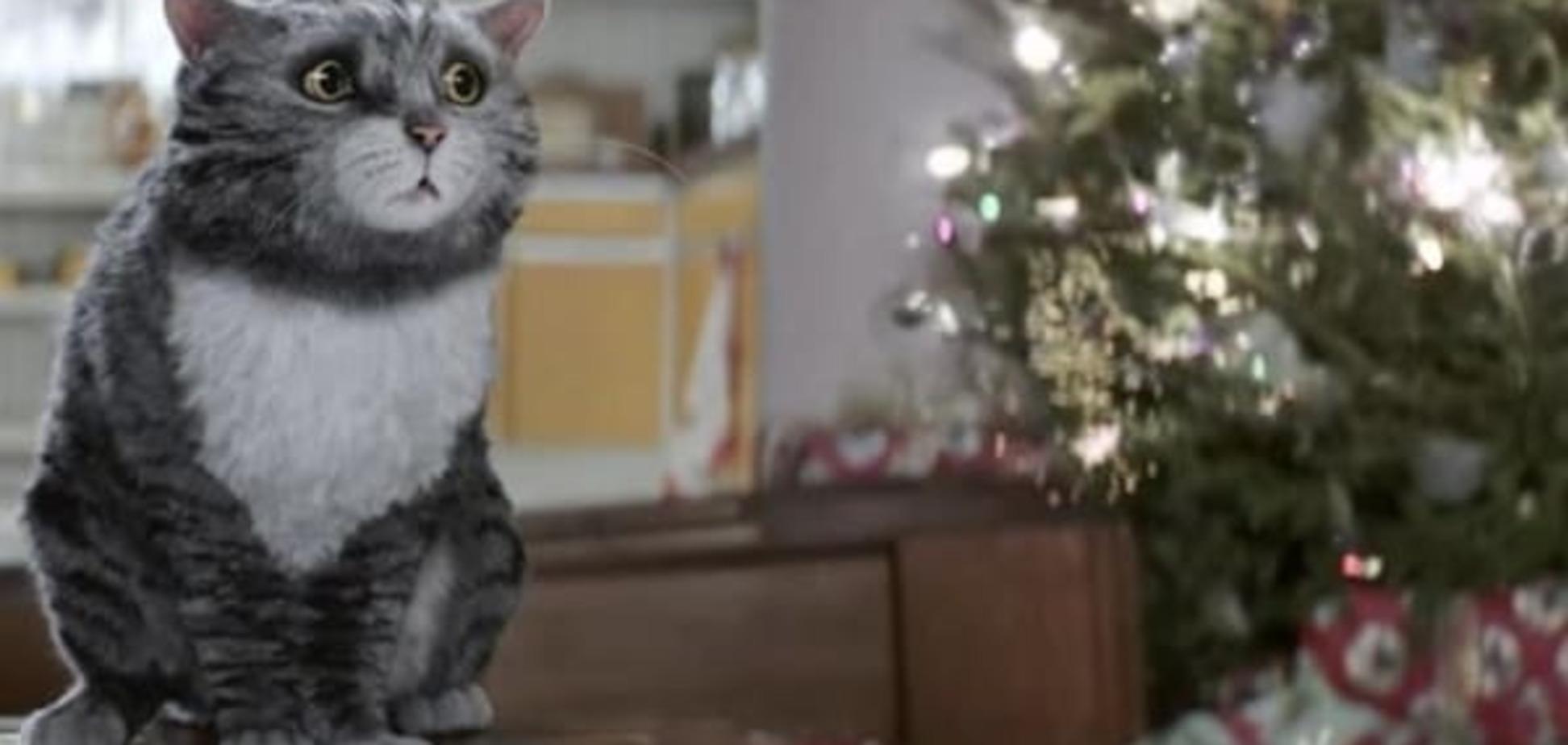 'Мімішний' відеохіт: кіт, який зіпсував Різдво, 'підірвав' мережу