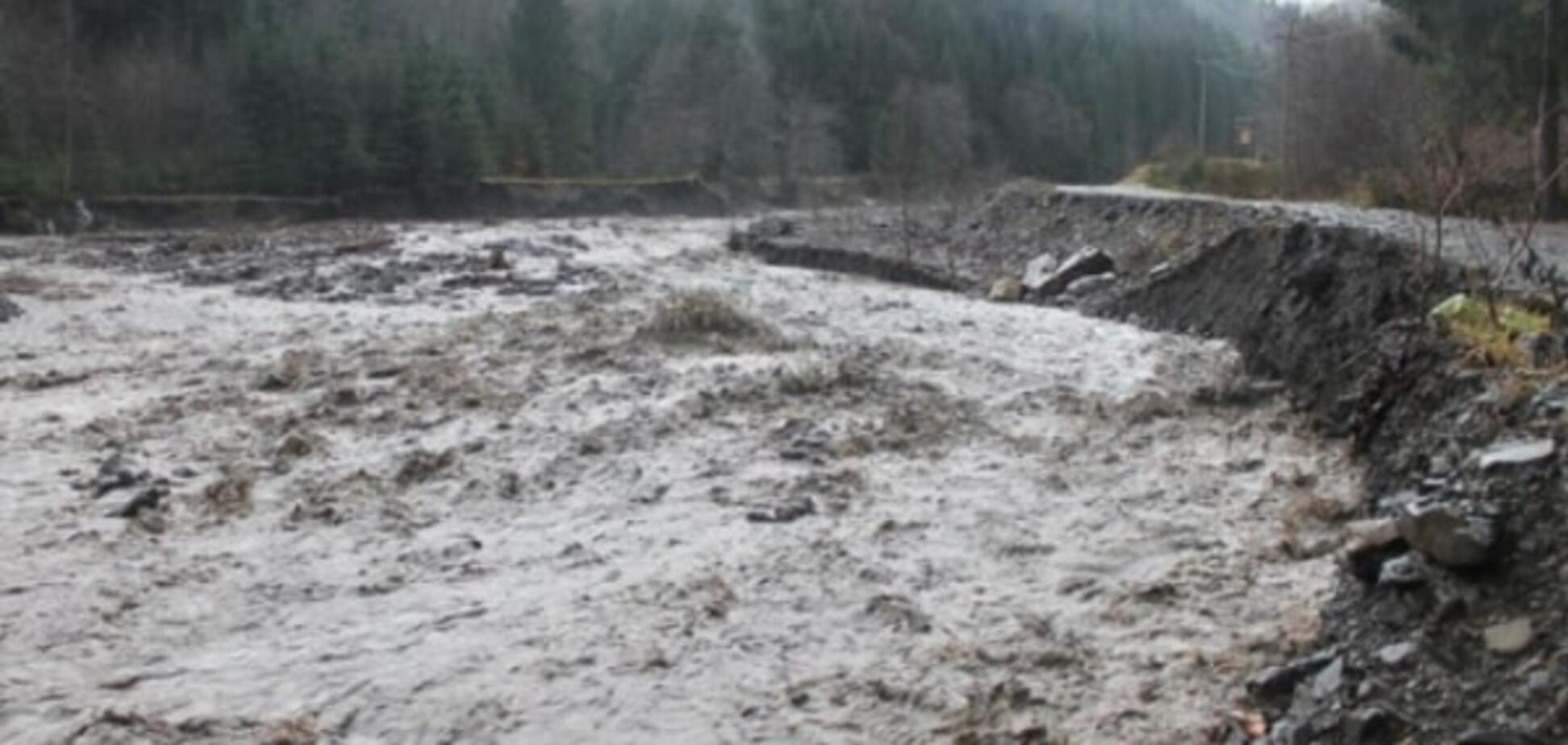 Сума збитку від паводку на Закарпатті понад 2 млрд грн - Москаль