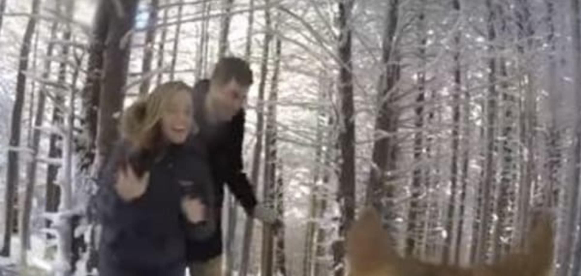 У США пес зняв чарівне снігове весілля своїх господарів