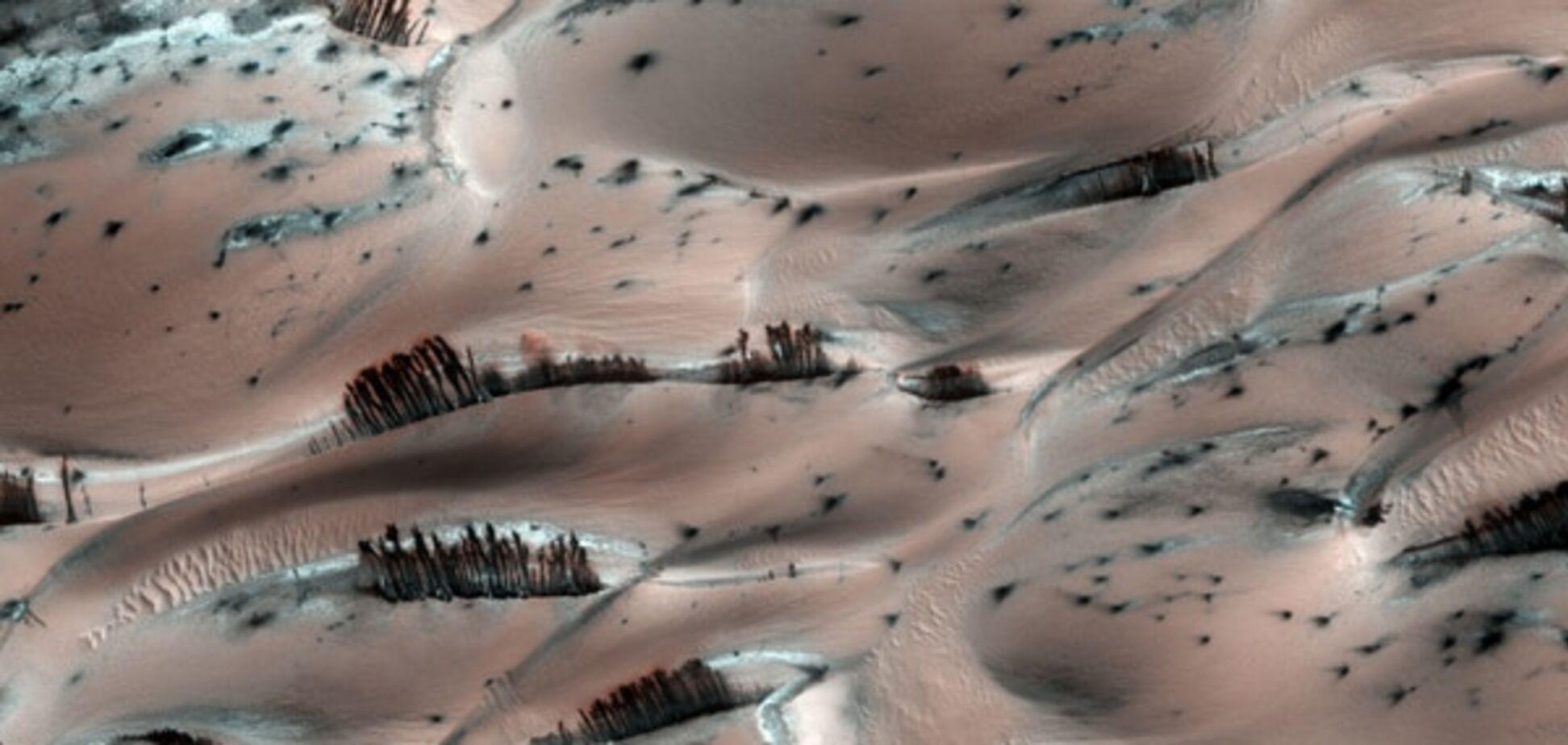 NASA виявило на Марсі 'дерева' на дюнах: фотофакт
