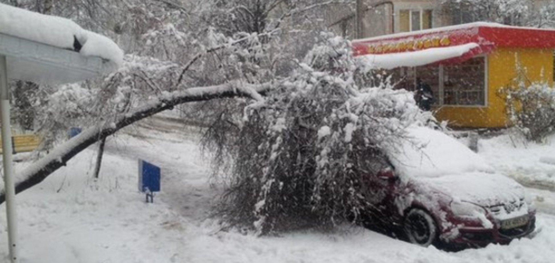 'Кінець світу' та інші неприємності: як Україна зустріла урагани і снігопад