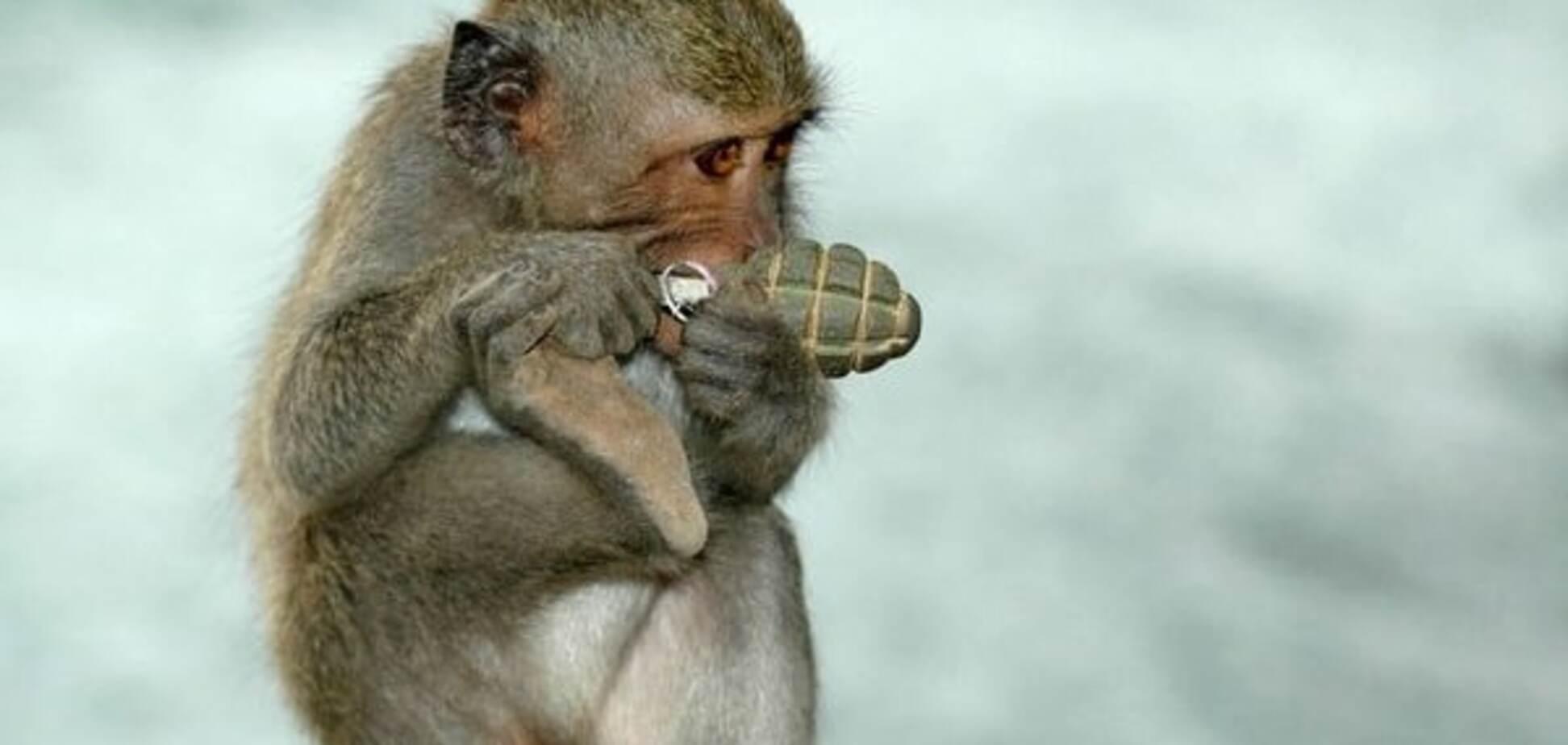 Смішна мавпочка: соцмережі висміяли Соболєва з гранатою