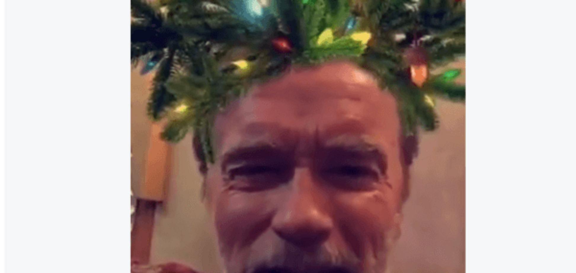 Шварценеггер оригінально привітав американців з Різдвом: відеофакт