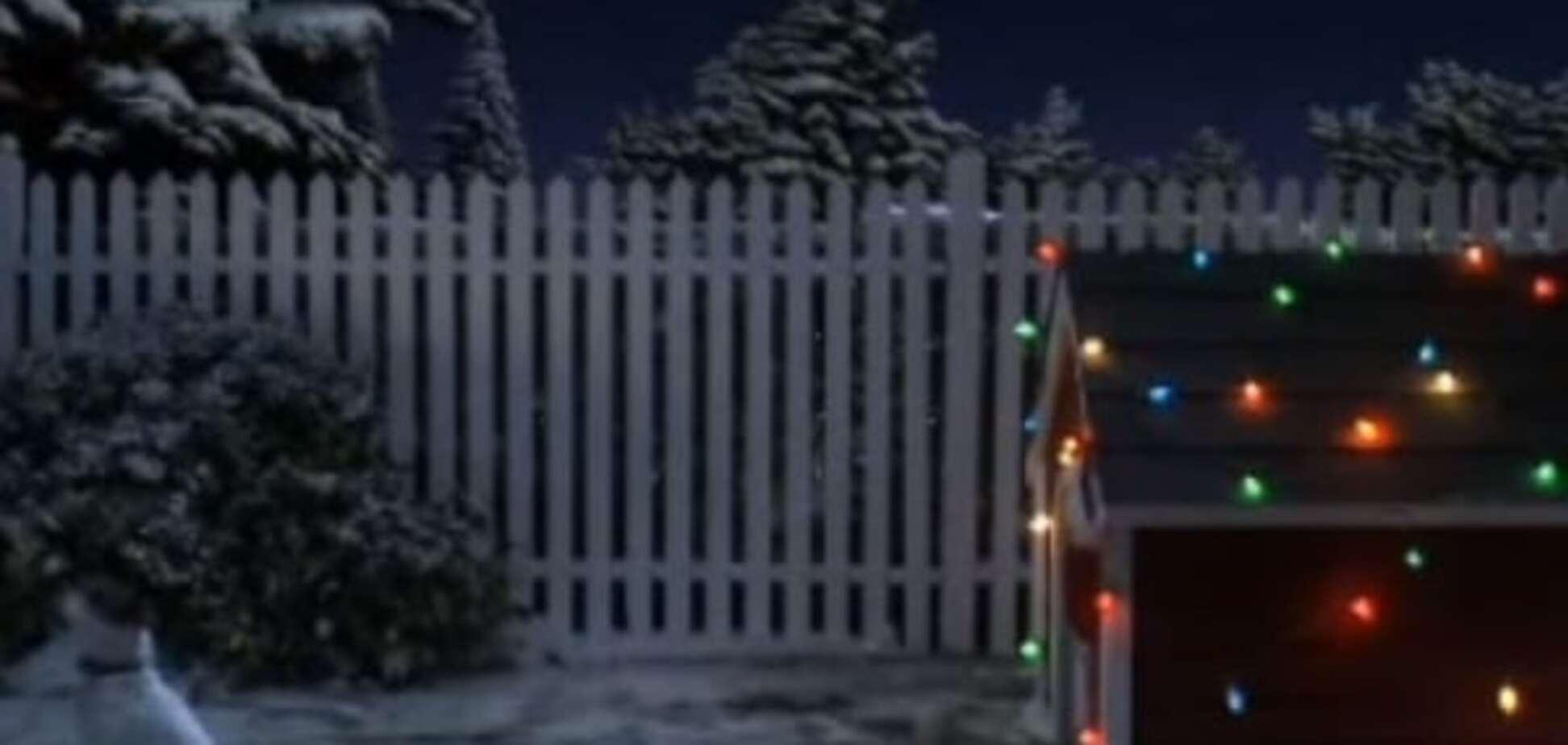 Новый год на носу: в сети 'гуляет' потешный ролик, как собака ждала Санту