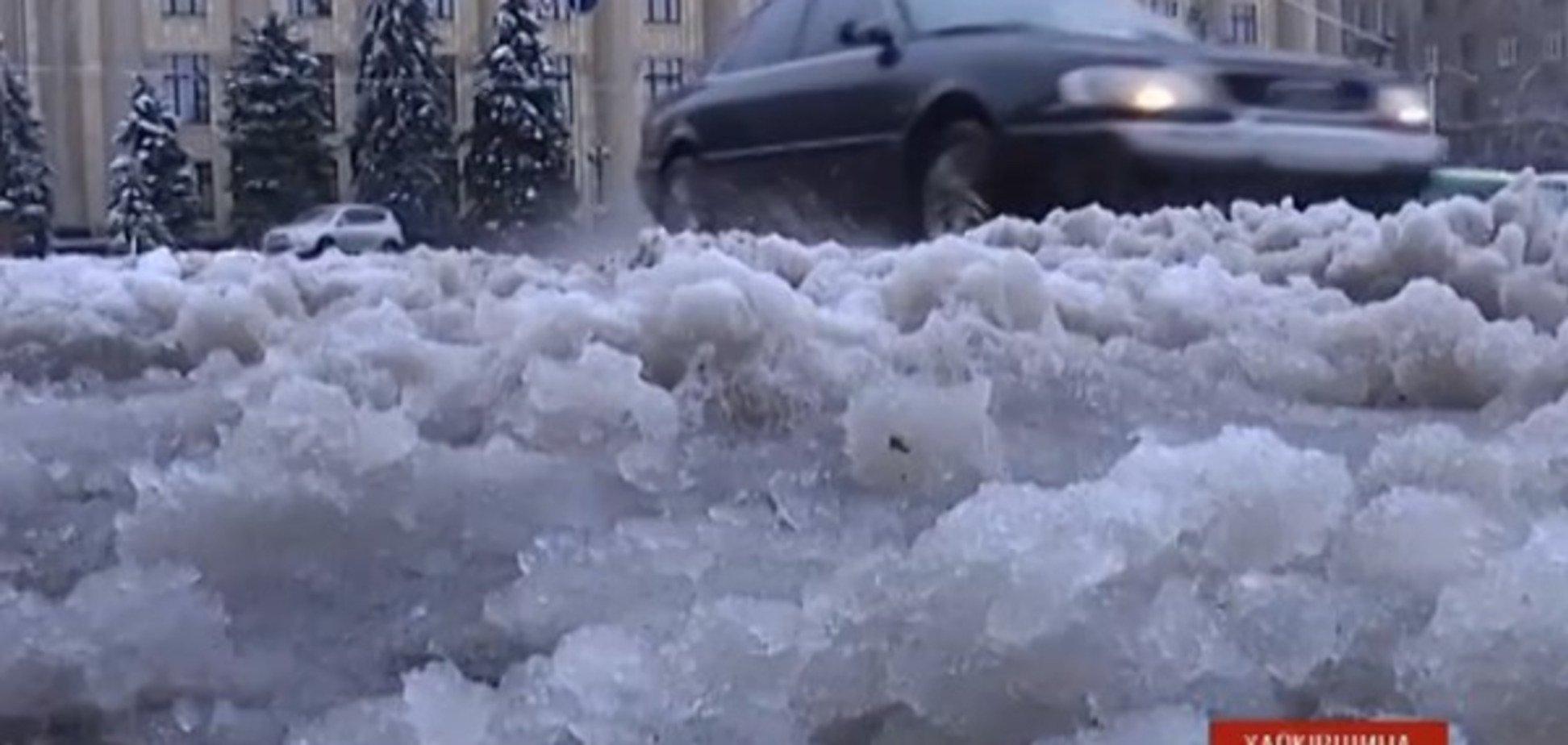 Негода в Україні: повалені дерева, ДТП і знеструмлені населені пункти