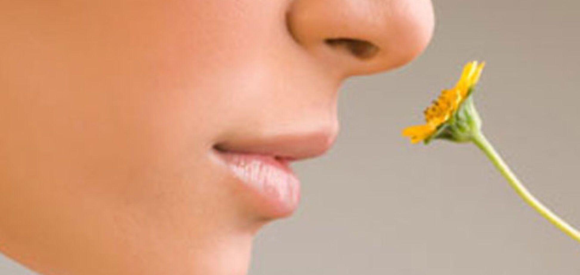 Как запахи влияют на работоспособность, память и концентрацию внимания