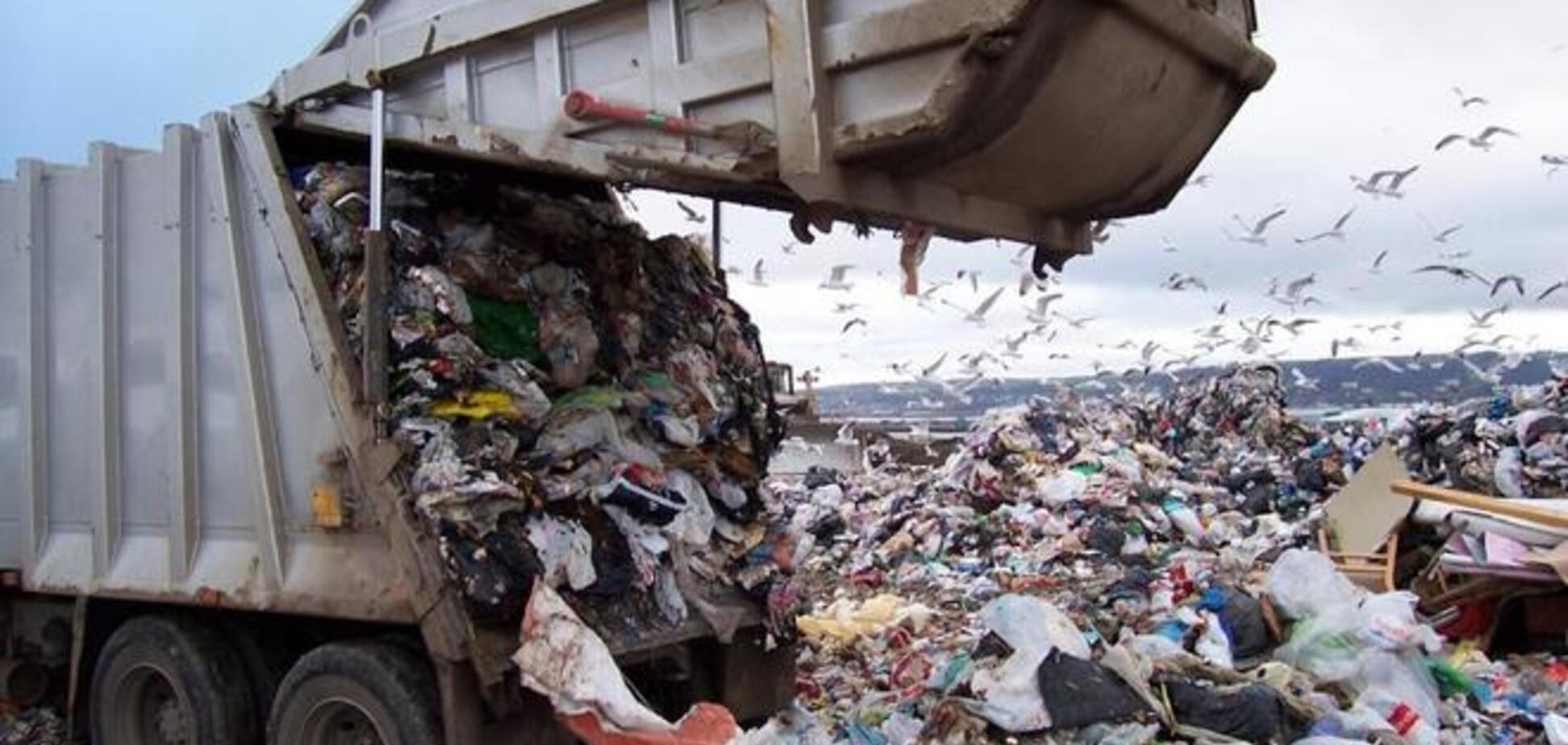 Оккупанты доводят Севастополь до настоящего мусорного коллапса - эколог