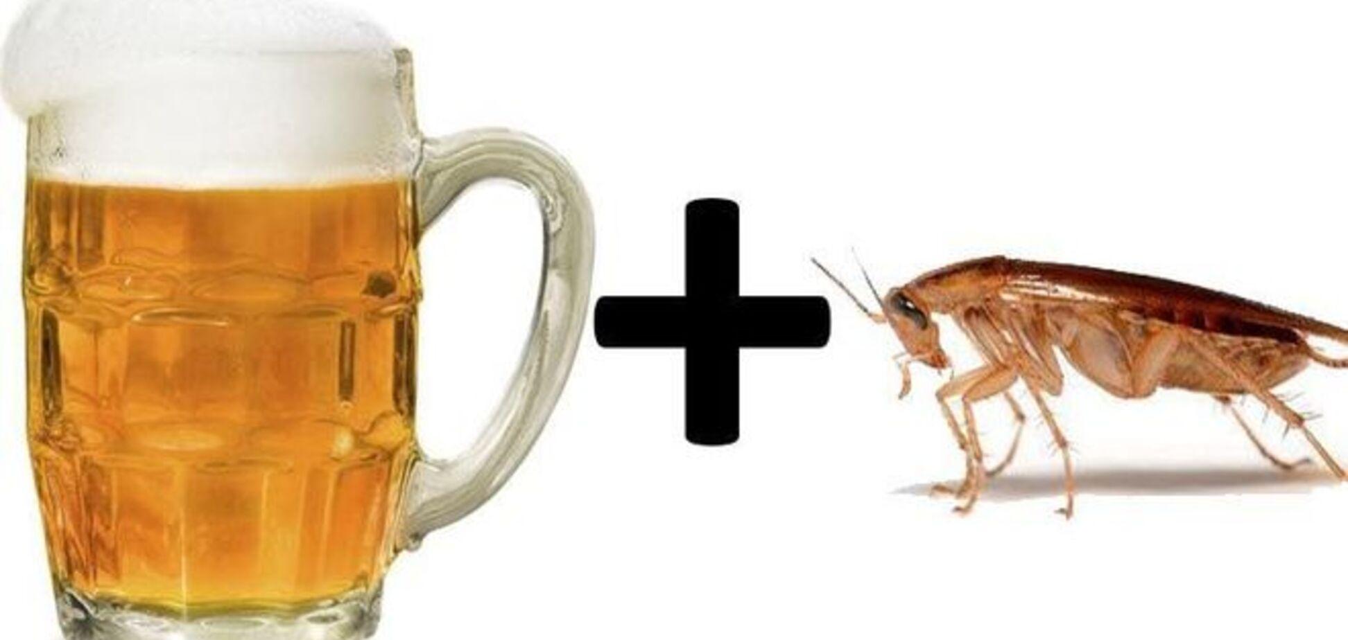 Интернет потрясло видео с тараканом-алкоголиком, который пьет пиво