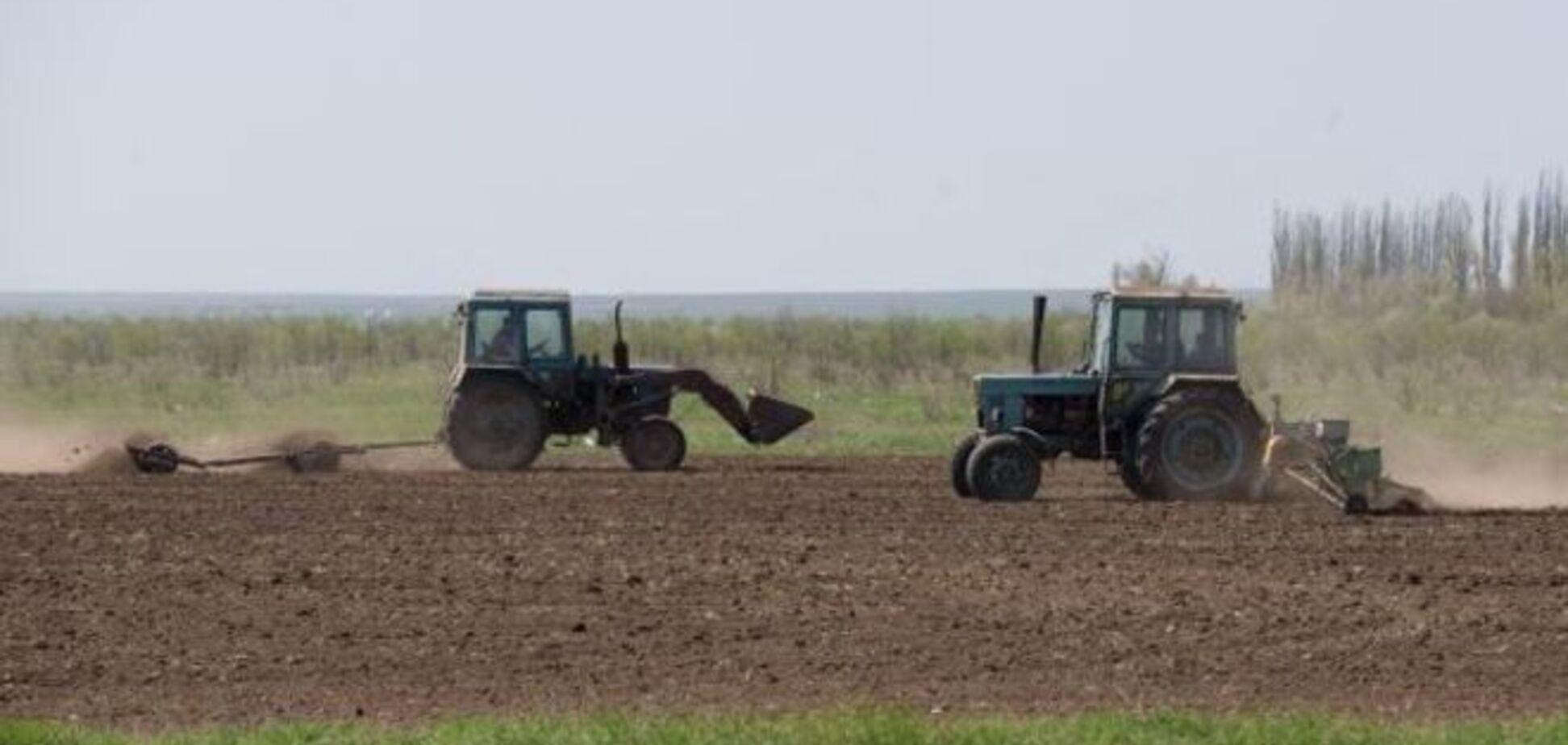 Украинцам светит очередной рост цен. Теперь из-за проблем с посевной