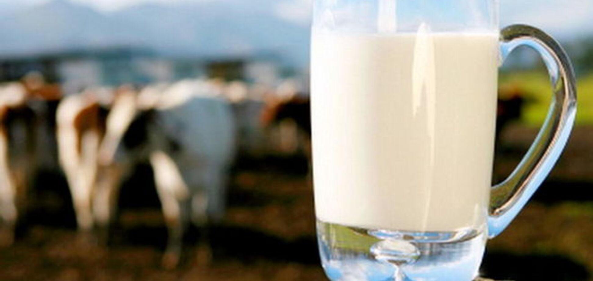 Депутаты намерены оказать поддержку молочной отрасли