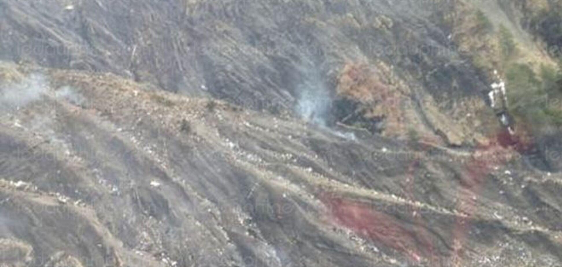 У мережі з'явилося перше фото з місця авіакатастрофи Airbus A320