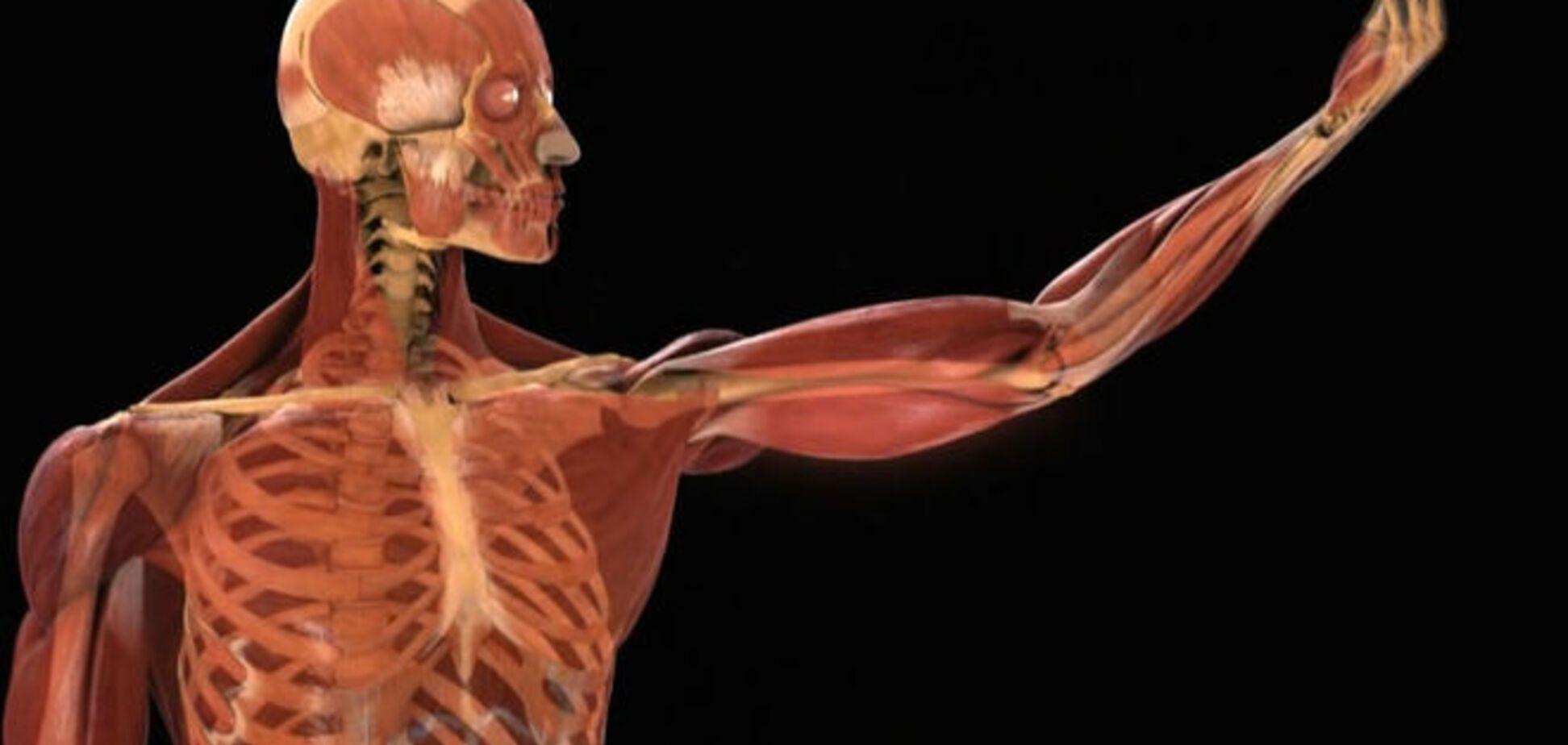 Почему щекочет в горле и еще 9 впечатляющих фактов о теле человека