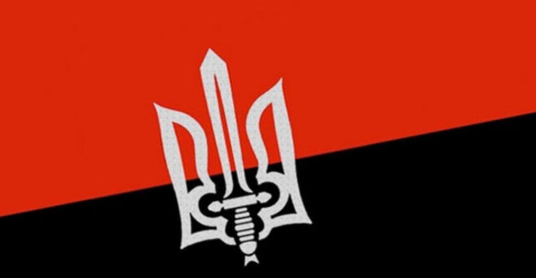 Правый сектор флаг картинки