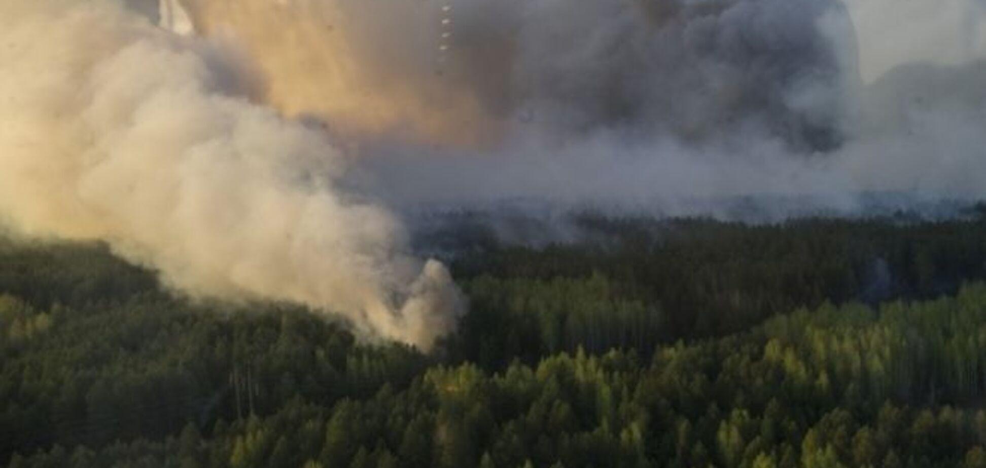 Впечатляет: появилось видео пожара в зоне ЧАЭС с высоты птичьего полета