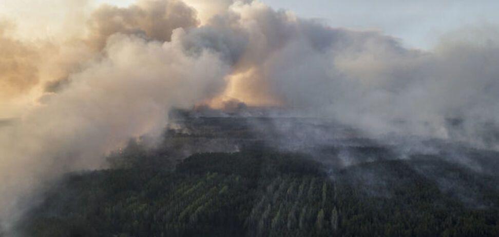 Пожар в зоне ЧАЭС: ветер пошел в сторону Киева