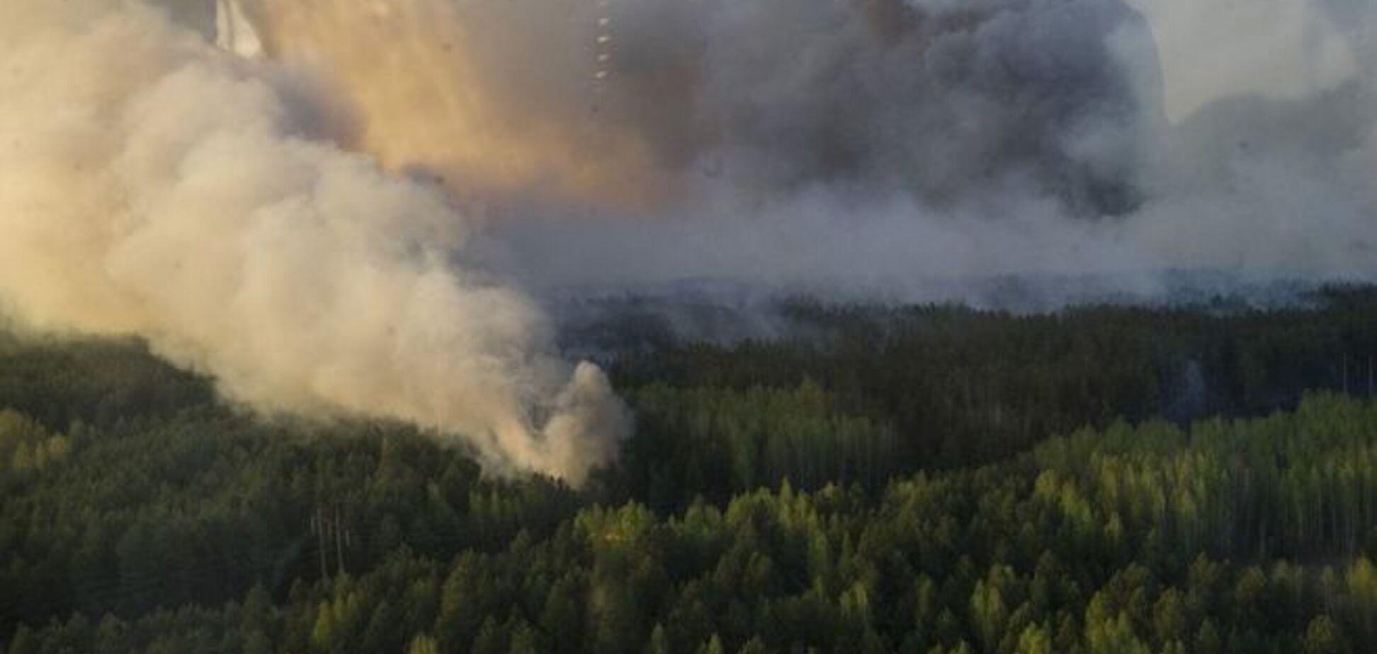 Пожар в зоне ЧАЭС: спасатели отчитались о радиационном фоне
