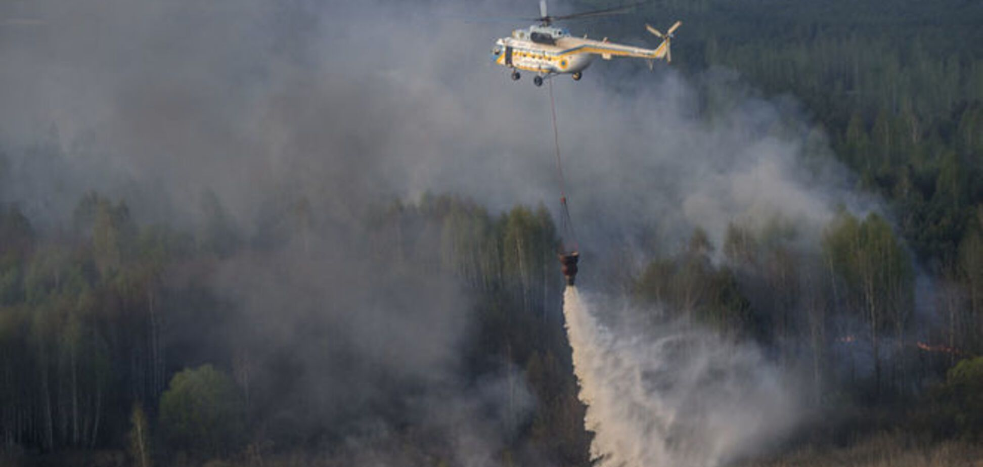 Соцсети о пожаре в зоне ЧАЭС: мы все умрем, нас спасет только кактус