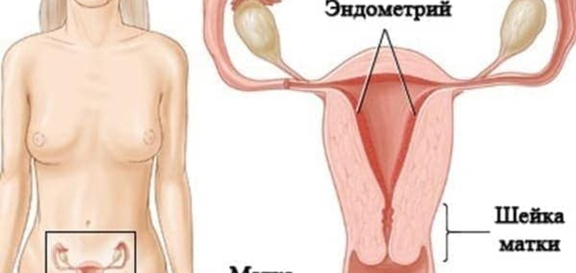 Какой должен быть эндометрий при беременности?