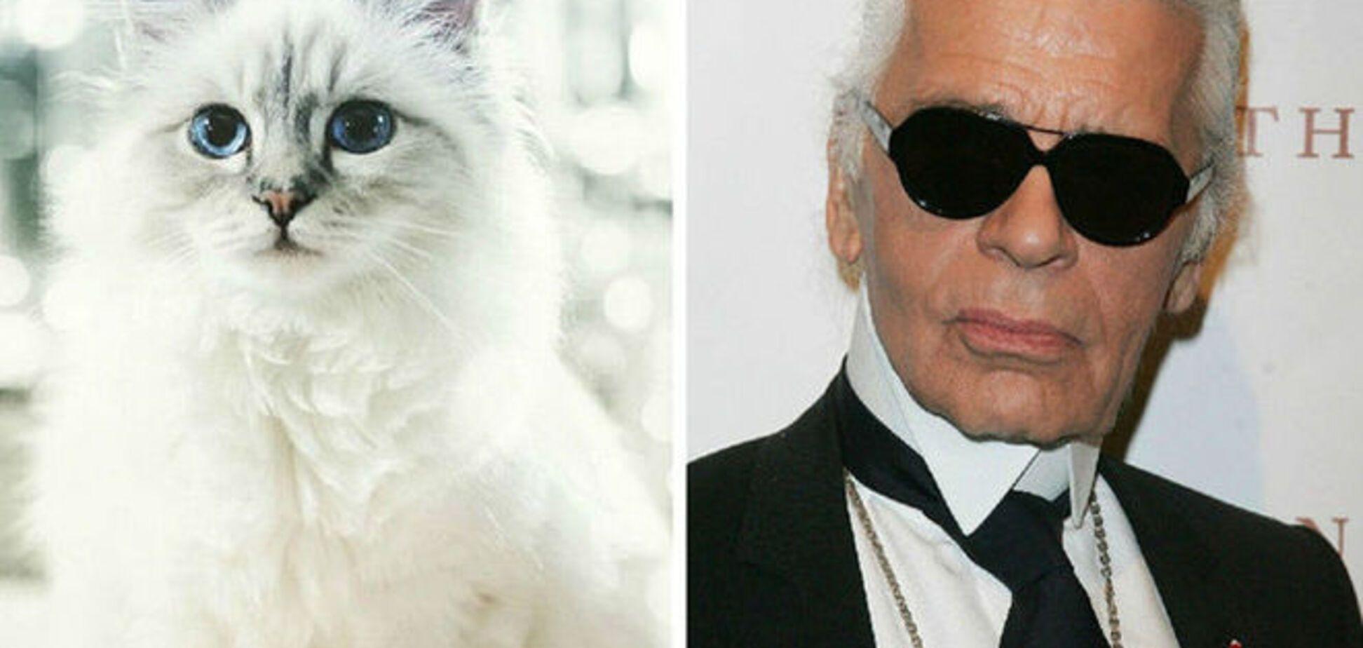 Кошка Лагерфельда имеет двух горничных, банковский счет и гонорар в 69 млн грн