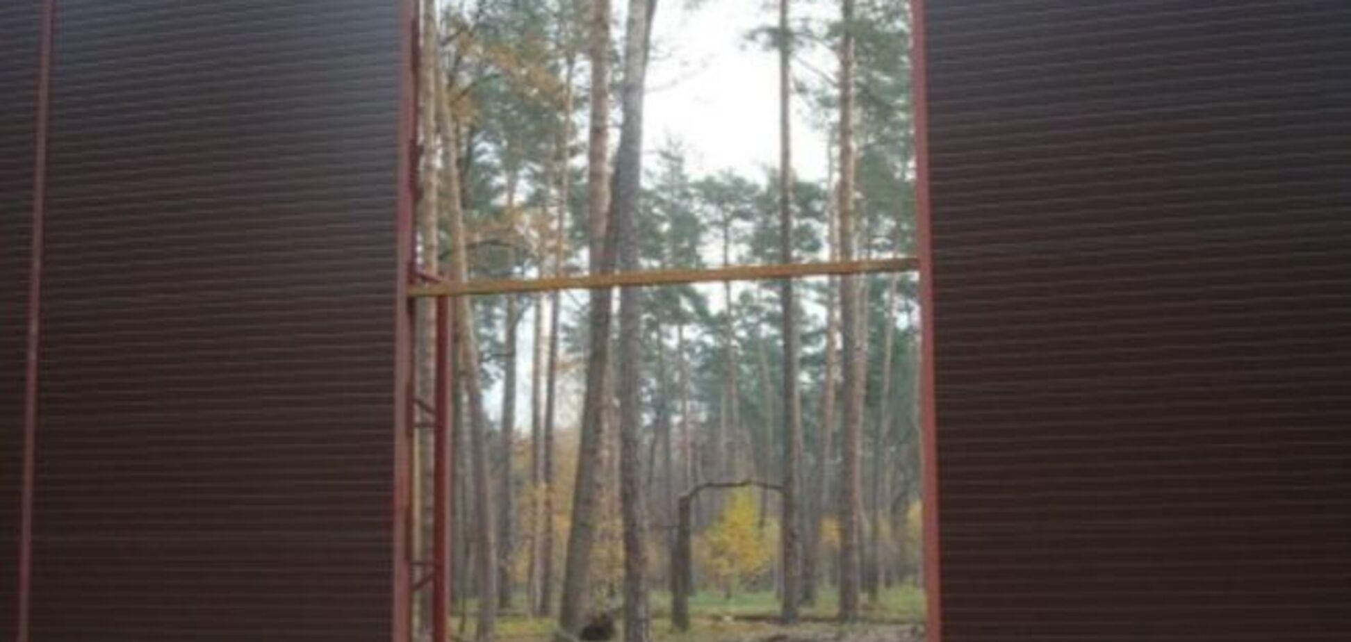 Дід Калетника заблокував рішення суду по 14 га лісу під Києвом