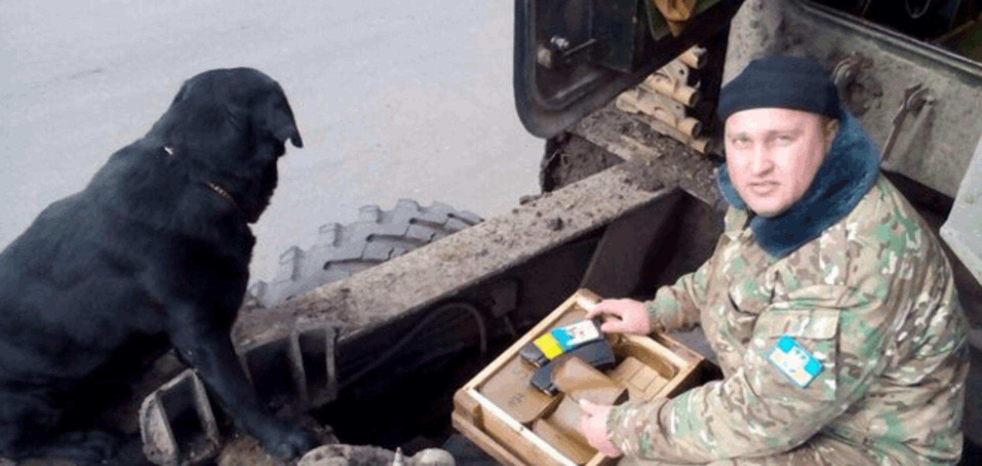'Відчувають на постріл'. Як бойові пси несуть службу в зоні АТО