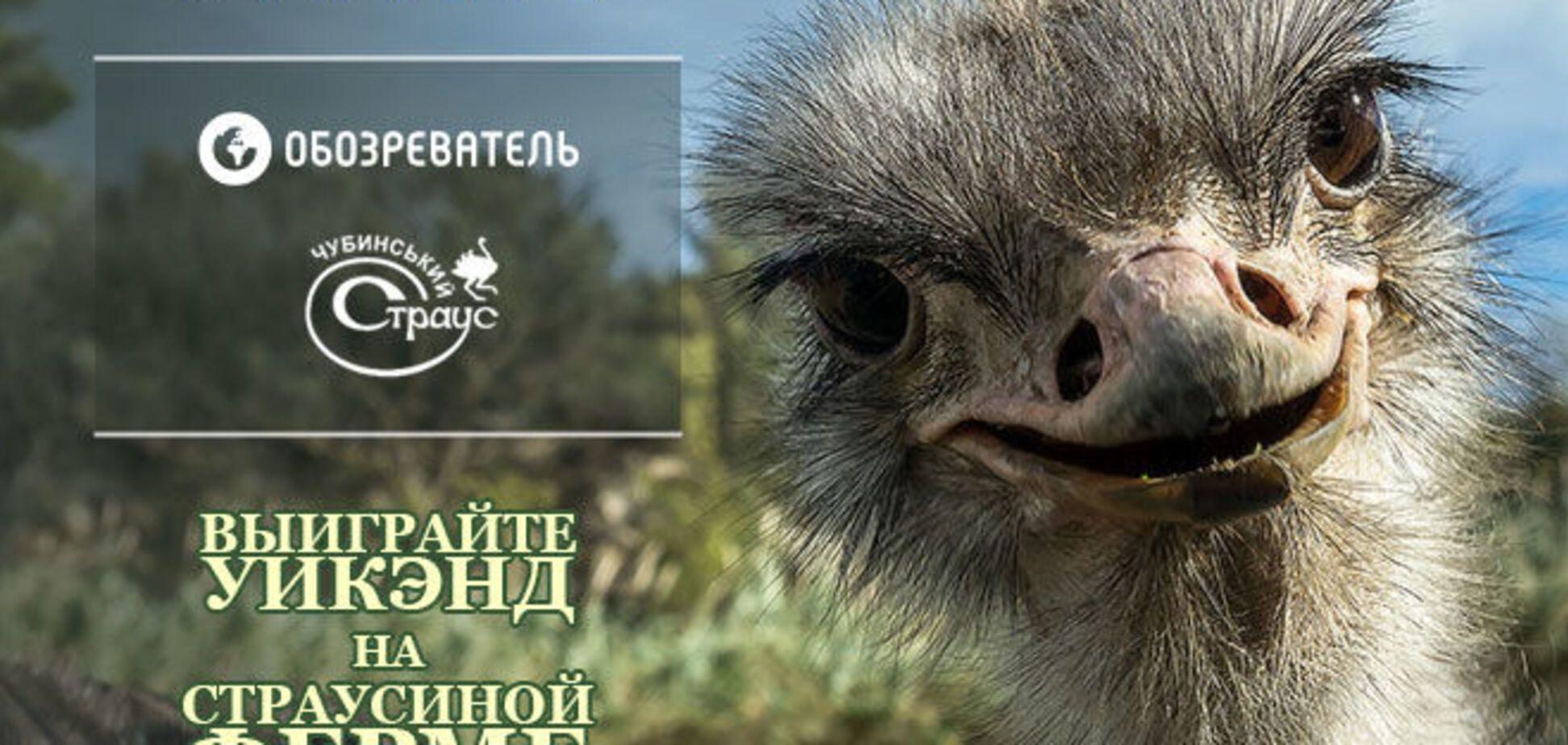 Выиграй поездку c детьми на страусиную ферму