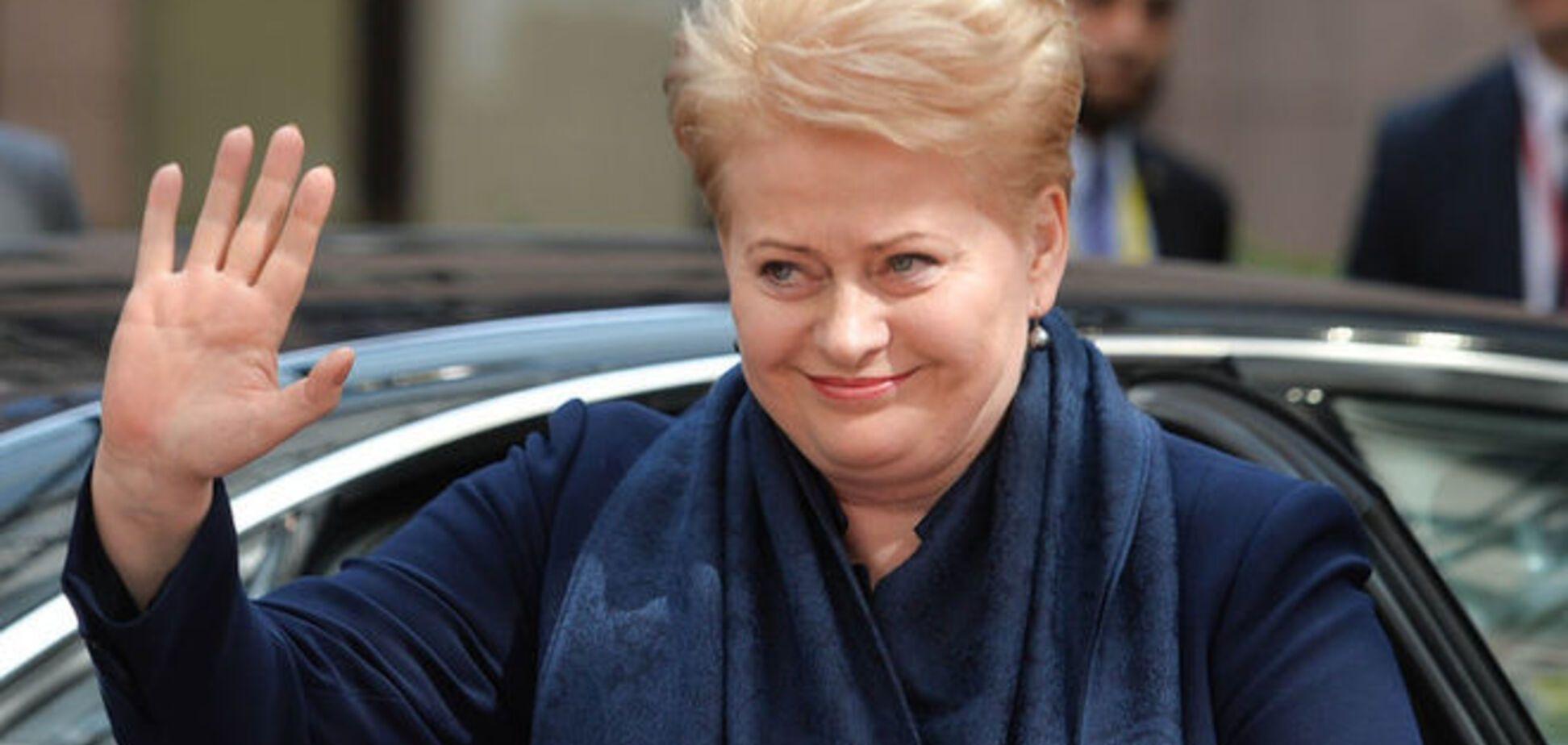 Президент Литвы настояла, что российская агрессия в Украине – факт