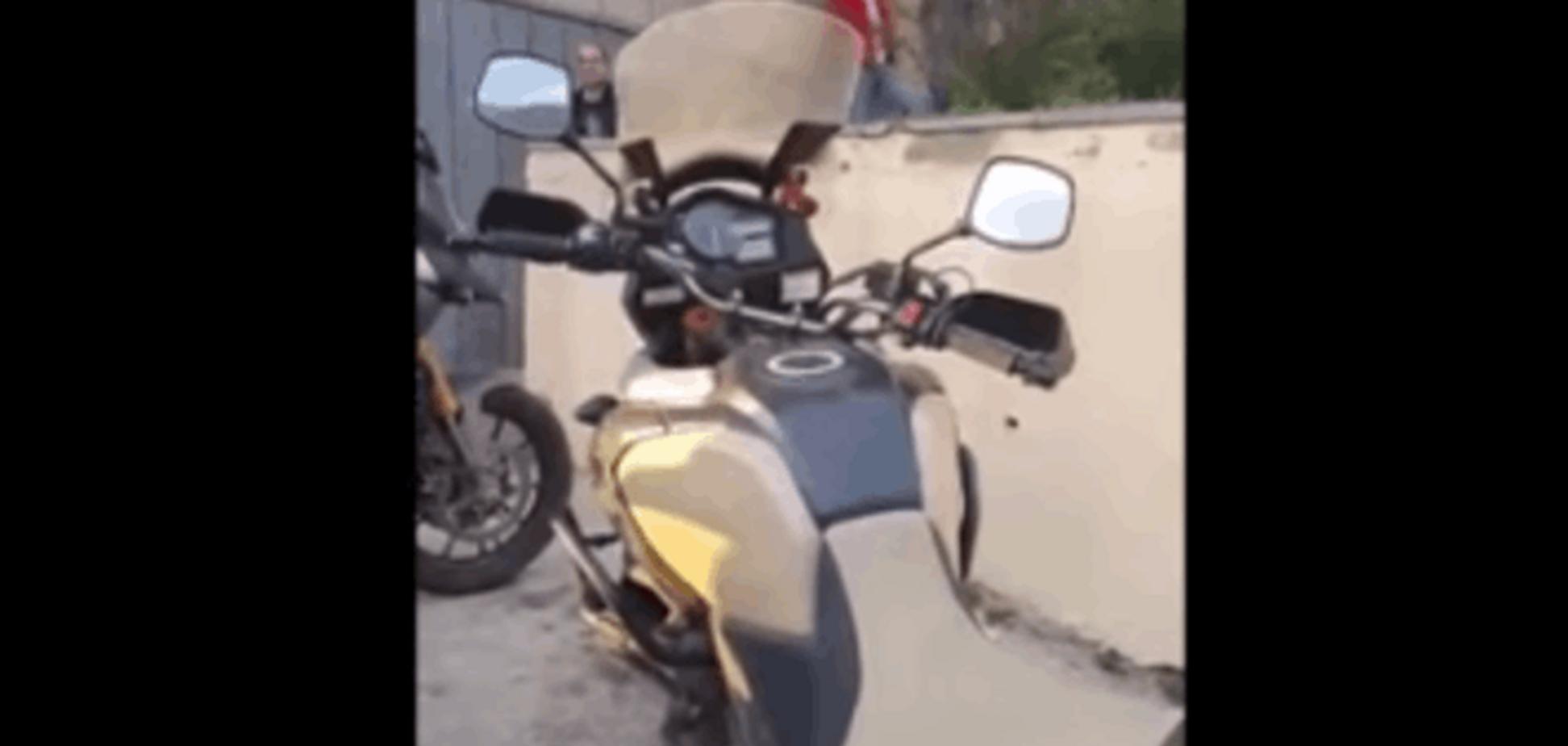 Шок! Путинские байкеры избили грузинку из-за 'георгиевской' ленточки: видеофакт