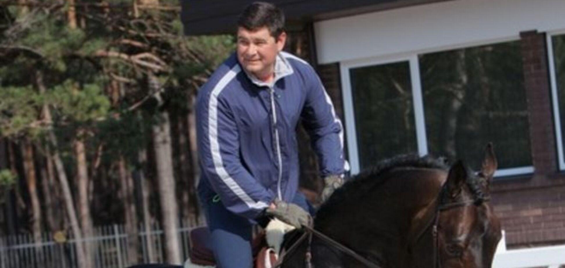 Онищенко о самолетах, Яценюке и бизнесе: топ-заявления любителя красивых женщин и лошадей