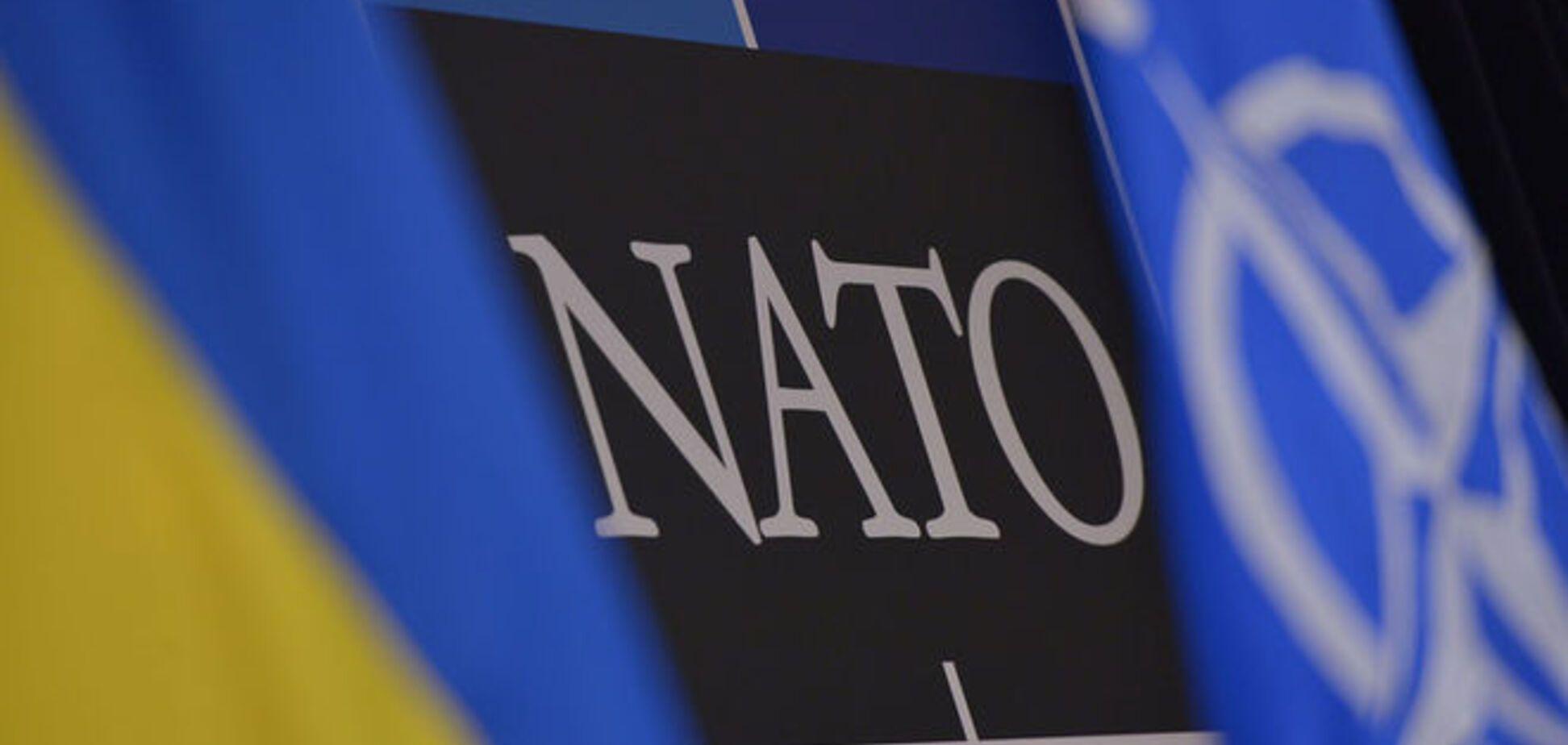 Олещук рассказал, как Украине добиться членства в НАТО
